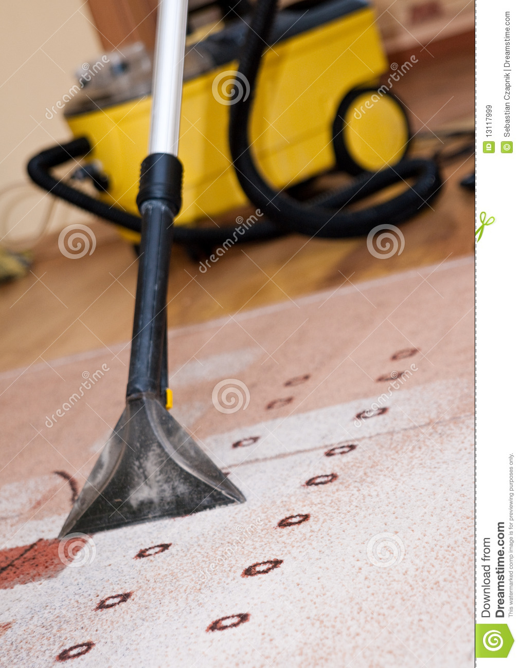 Professional Carpet Cleaning Royalty Free Stock Images Image 13117999