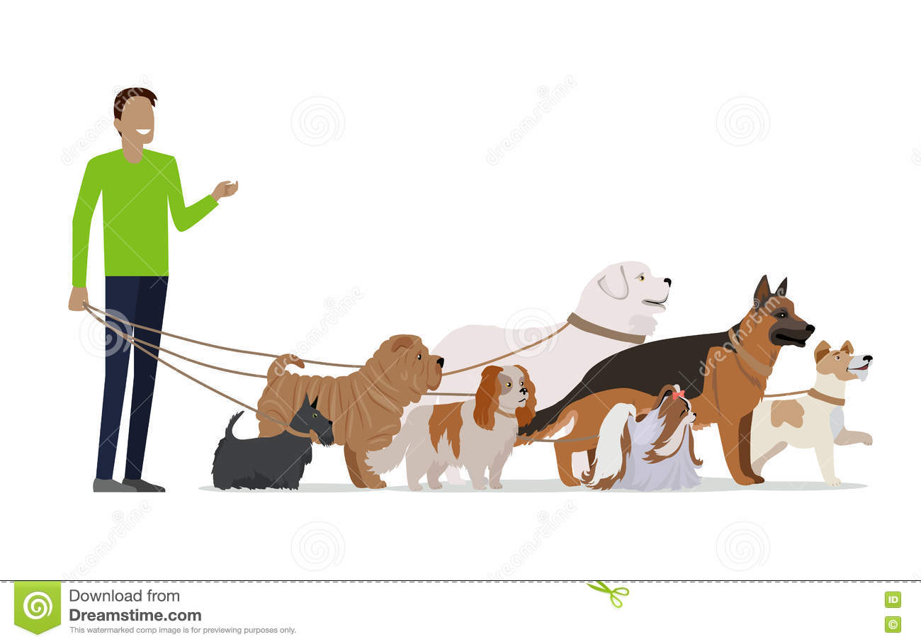 dating site for dog walkers