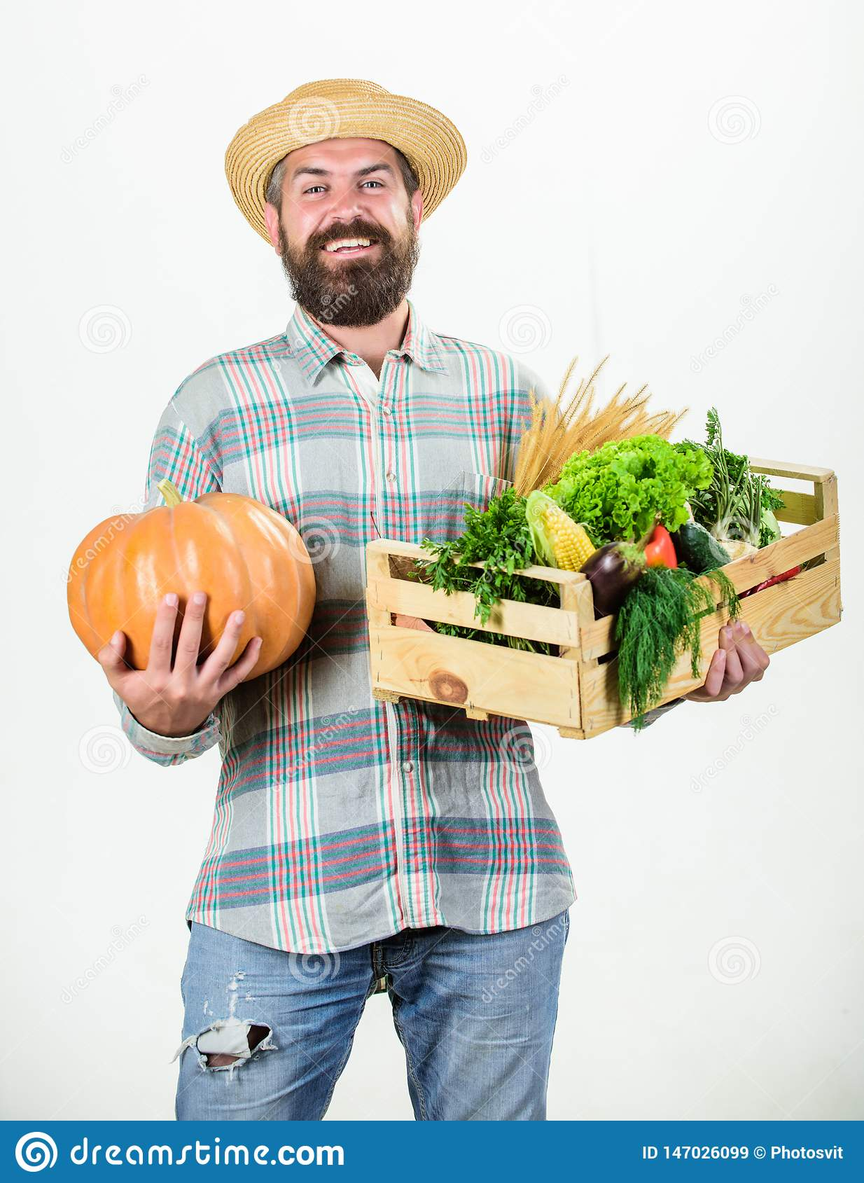 Professional farmer presenting basket. organic and natural food. happy halloween. harvest festival. man with rich autumn