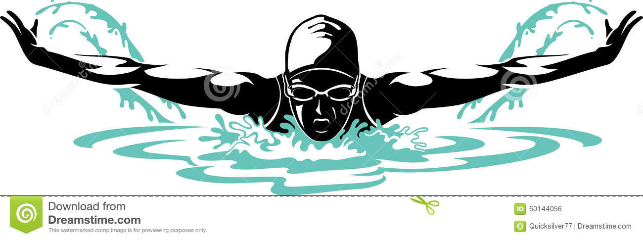 professional female butterfly swimmer stock vector
