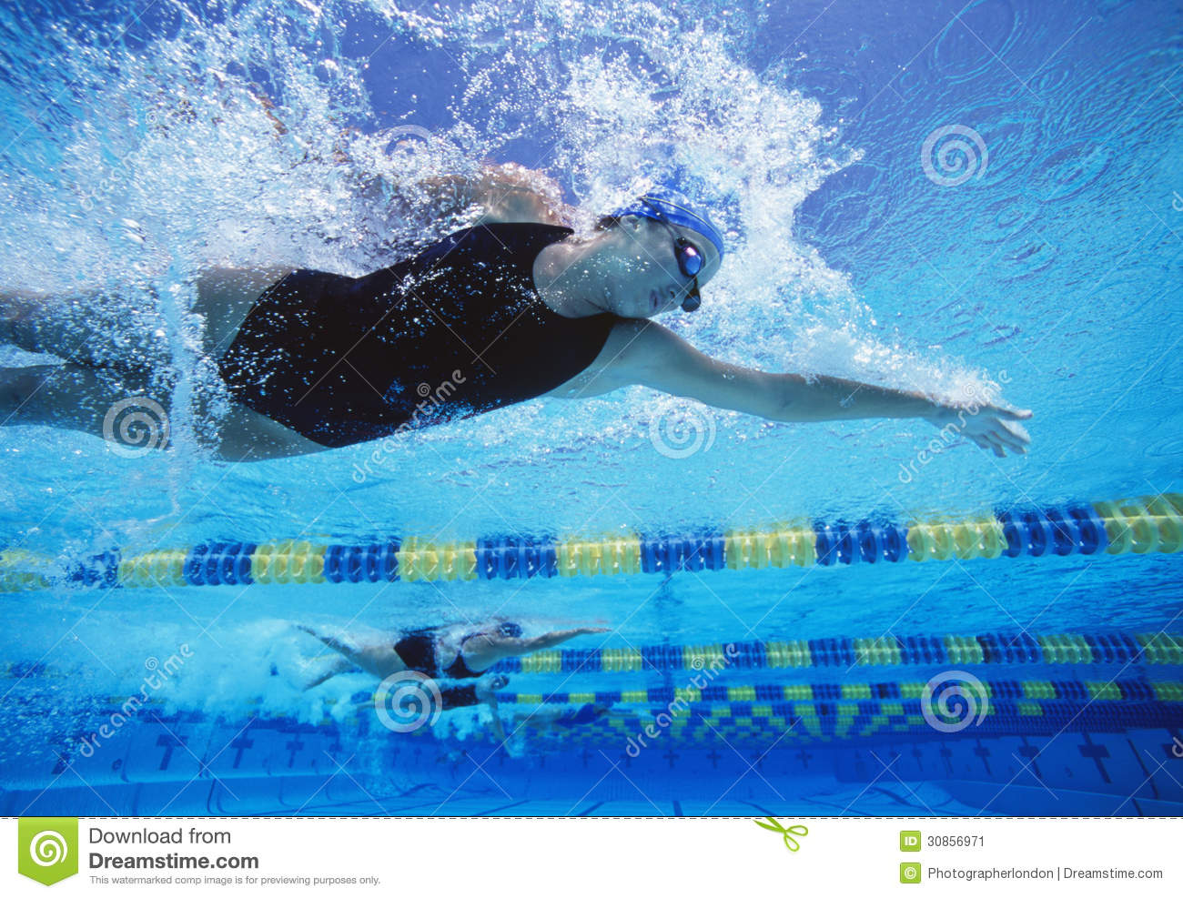 Stock Image: Professional female swimmers swimming in pool