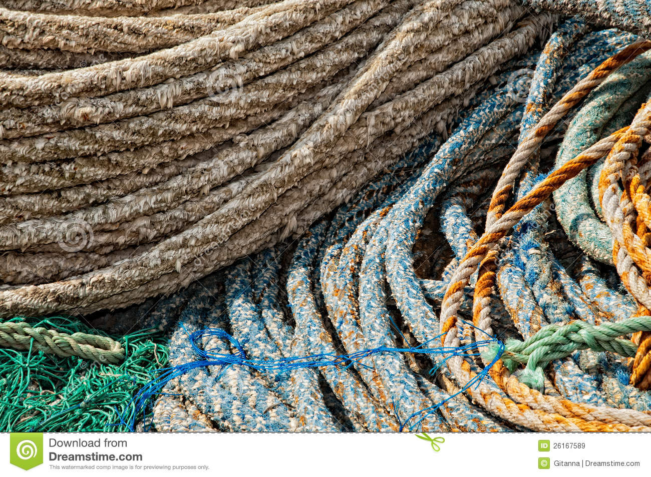 Professional fishing gear royalty free stock images for Professional fishing gear