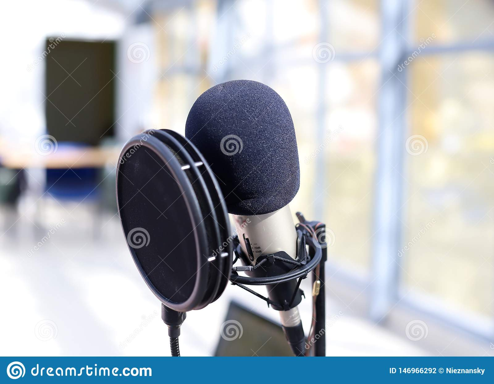 Professional microphone for vocal recording