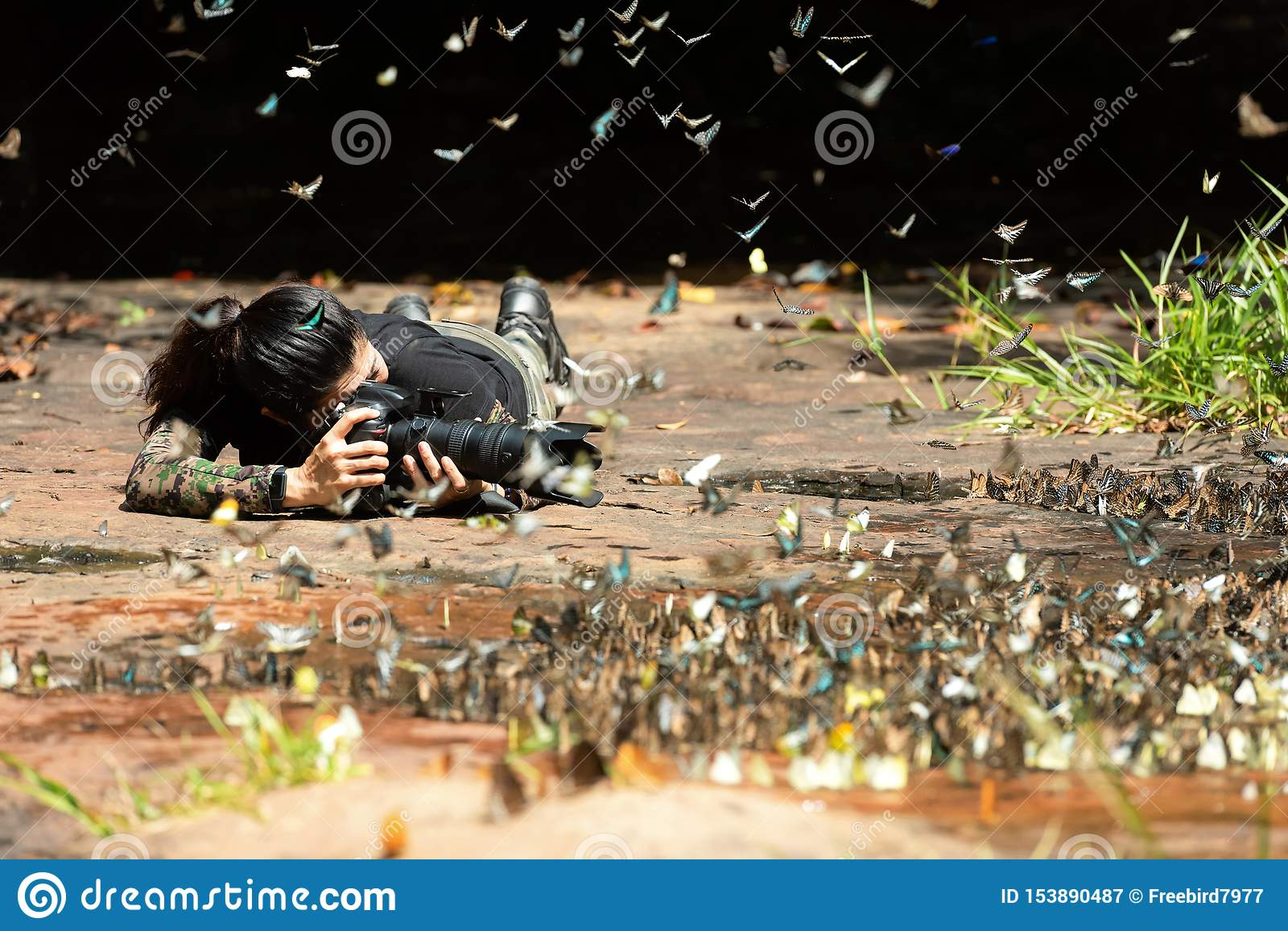 Professional woman photographer taking butterfly in the green jungle rain forest nature.