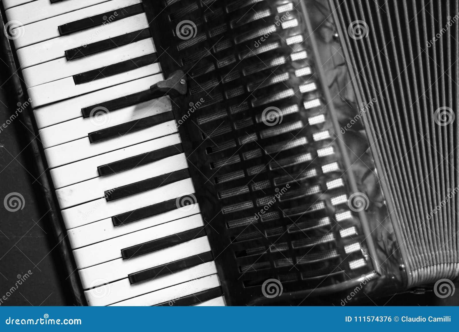 Professionele uitstekende harmonika