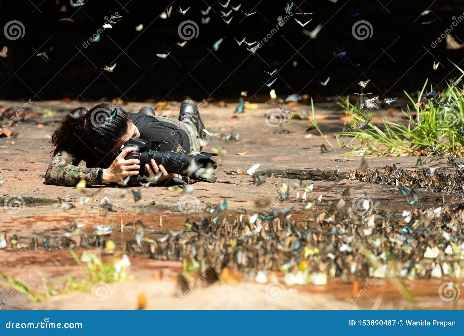 Professionele vrouwenfotograaf die vlinder in de groene aard van het wildernisregenwoud nemen