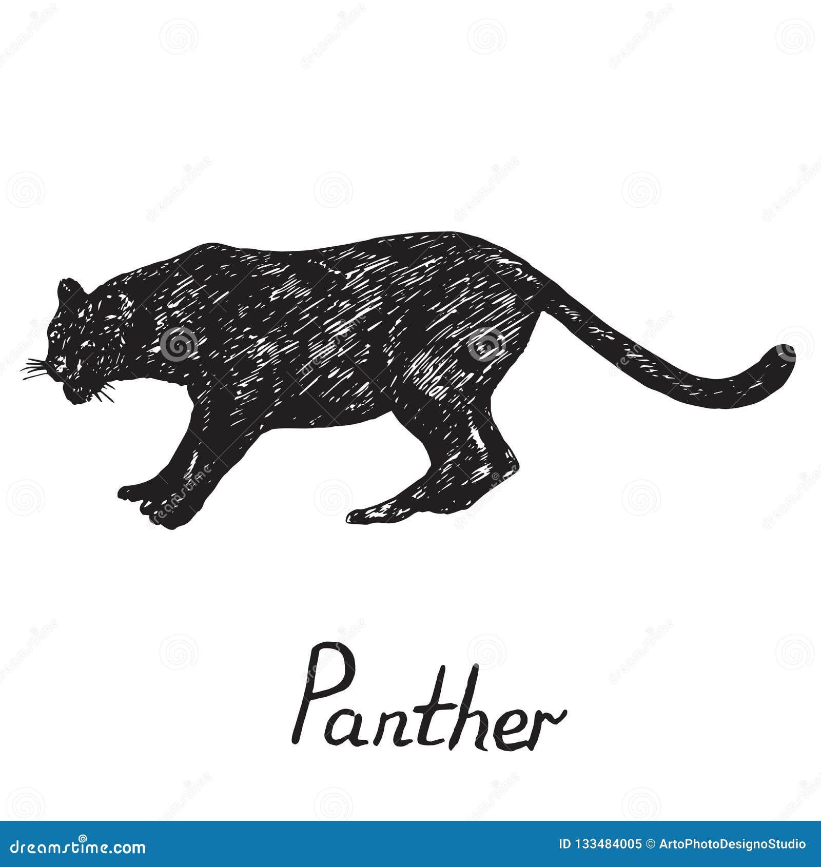 Profil De Silhouette De Position De Panthere Noire Griffonnage