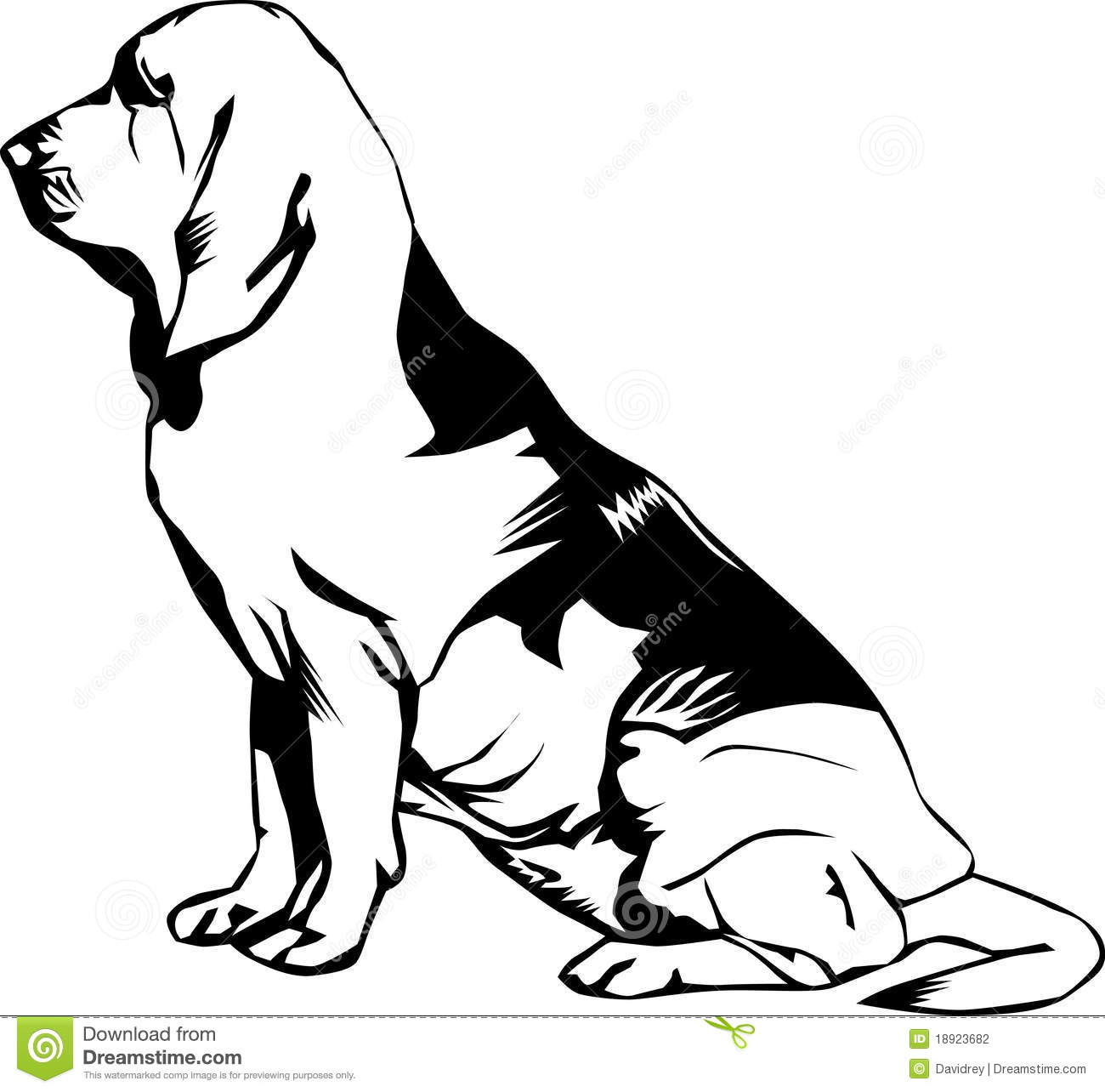 Bloodhound Coloring Pages Coloring Coloring Pages Bloodhound Coloring Pages