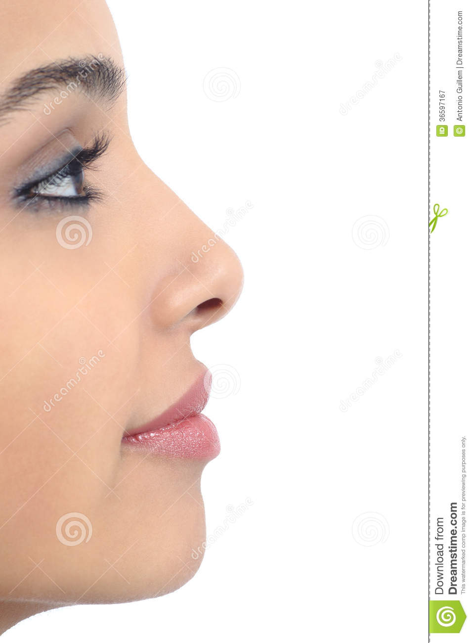 Profile of a perfect woman nose isolated on a white background Female Nose Profile