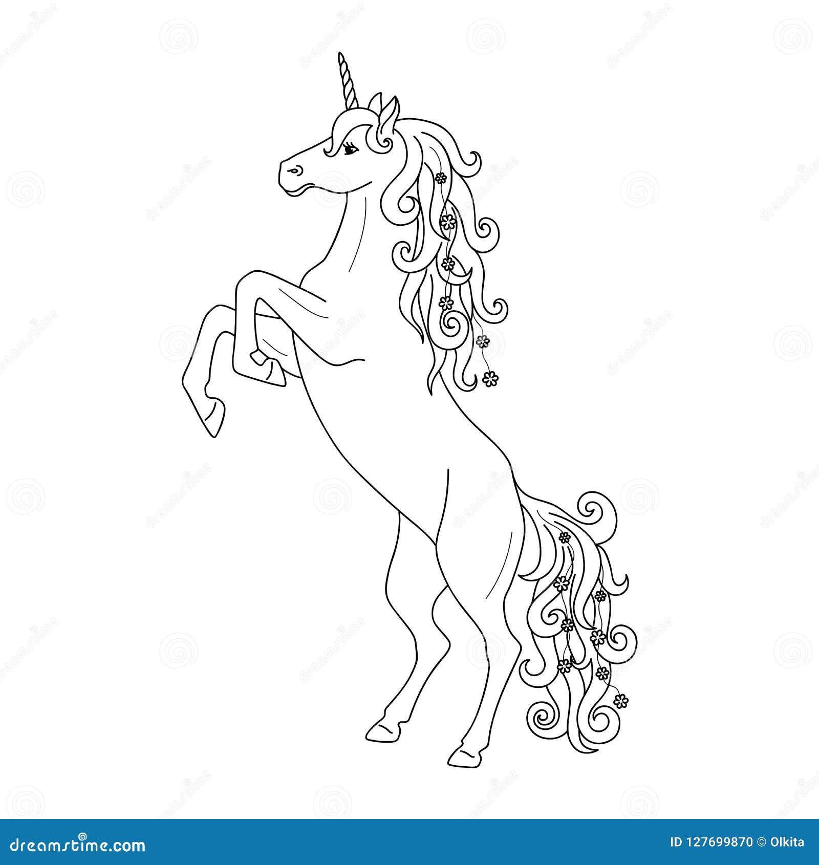 Profilo nero isolato che eleva unicorno su fondo bianco Vista laterale Linee della curva Pagina del libro da colorare