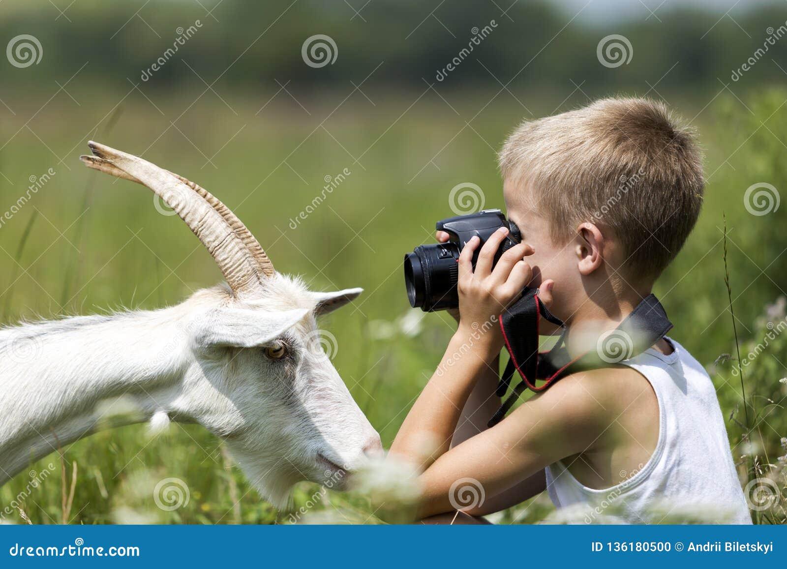 Profilstående av den unga blonda gulliga stiliga barnpojken som tar bilden av den roliga nyfikna geten som in camera ser rak på l