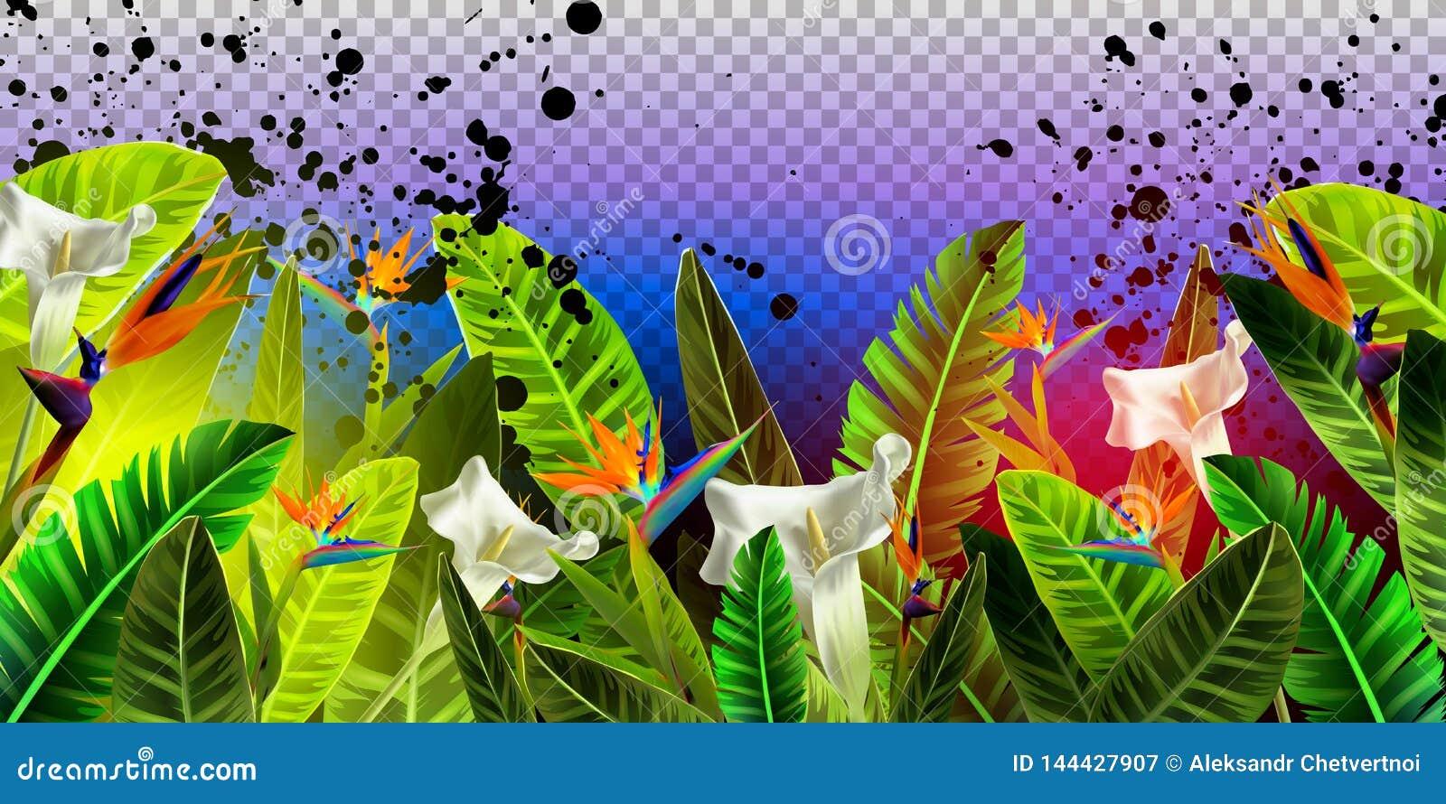 Progettazione d atterraggio della pagina di vettore con i verdi tropicali ed il fondo trasparente del flowerson Web, modello di a