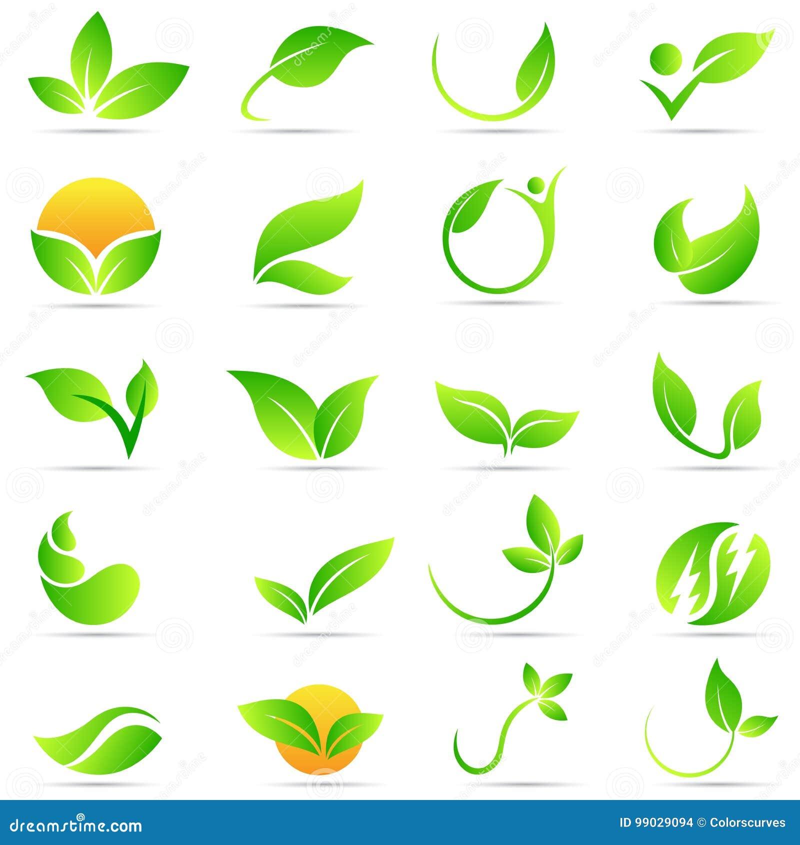 Progettazione dell icona di vettore di simbolo di ecologia della natura di benessere di logo della pianta della foglia
