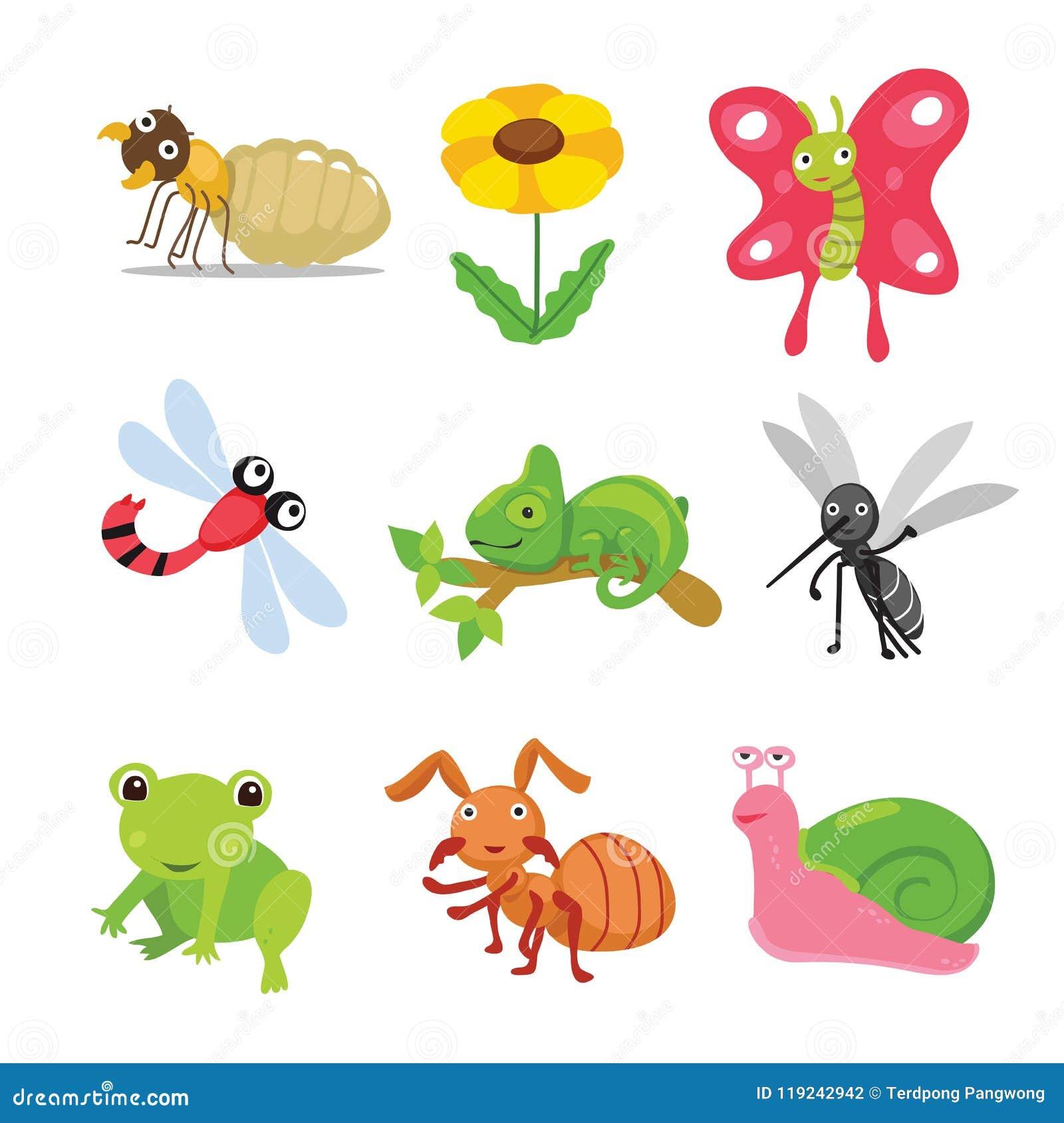 Progettazione di carattere degli insetti