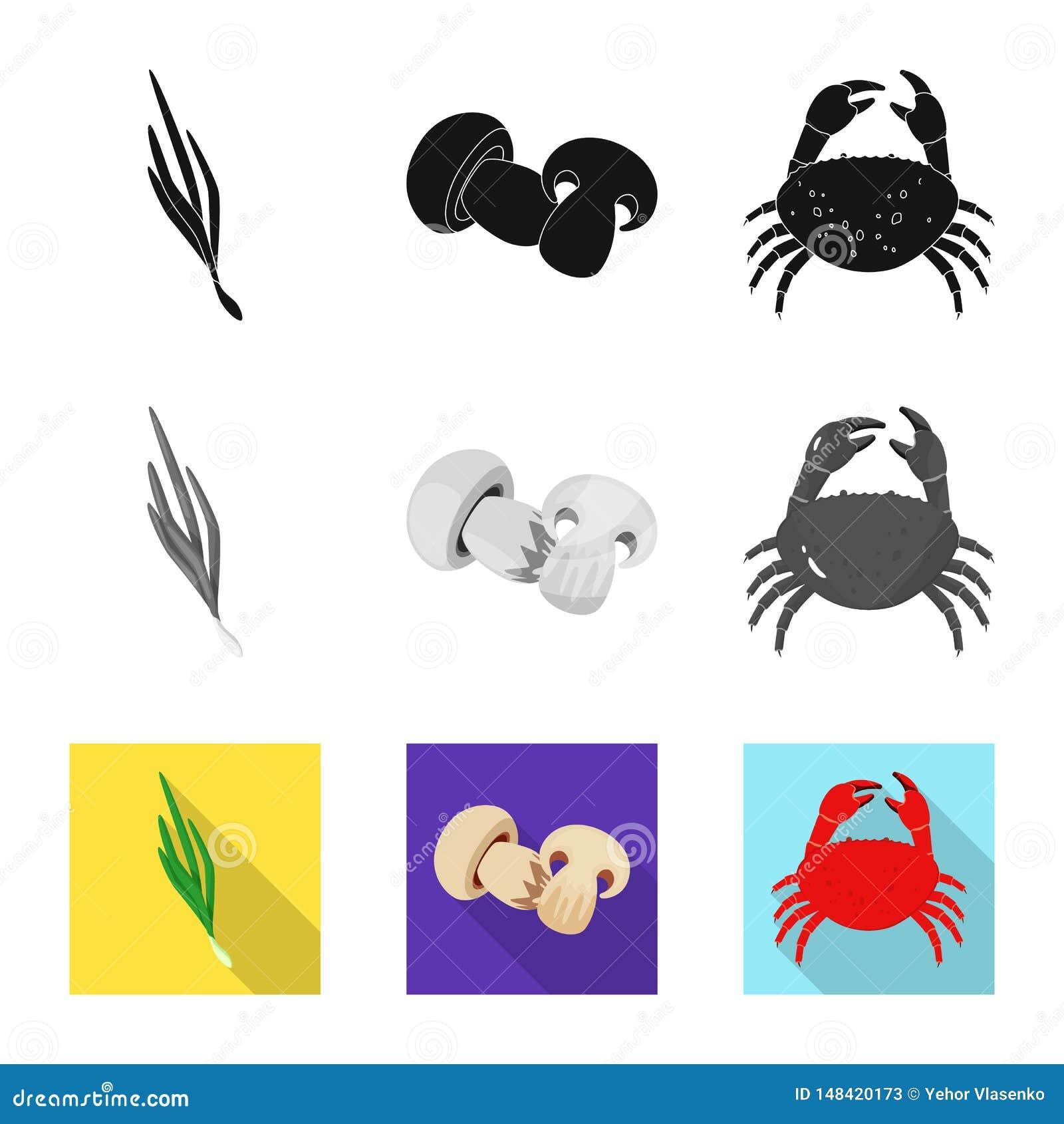 Progettazione di vettore di gusto e dell icona del prodotto Metta del gusto e di cottura dell illustrazione di riserva di vettore