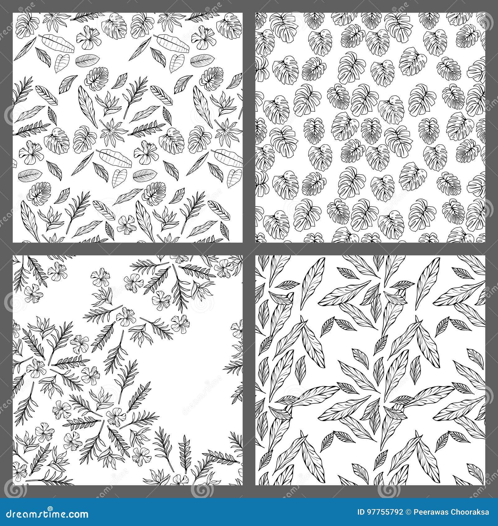 Carta Da Parati Tropicale Bianco E Nero.Progettazione Floreale Della Carta Da Parati Del Fondo Del Modello