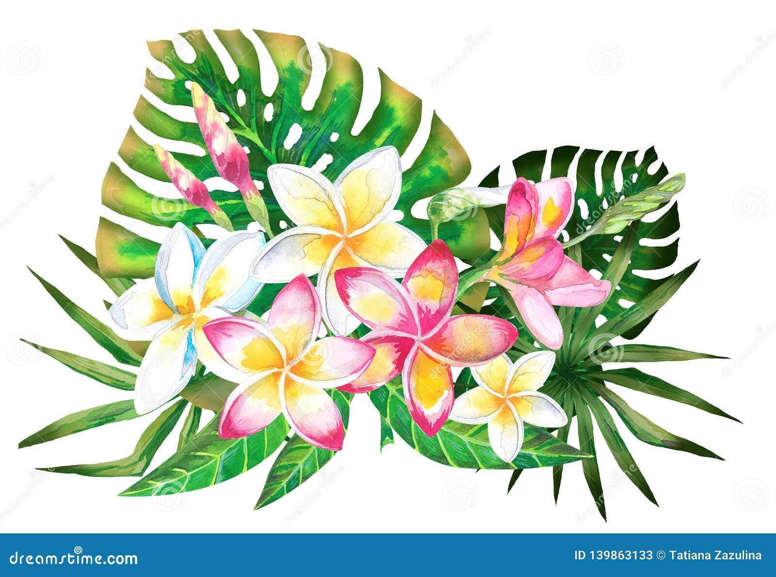 Progettazione tropicale di estate dell acquerello per l insegna o l aletta di filatoio con le foglie di palma esotiche, fiori di
