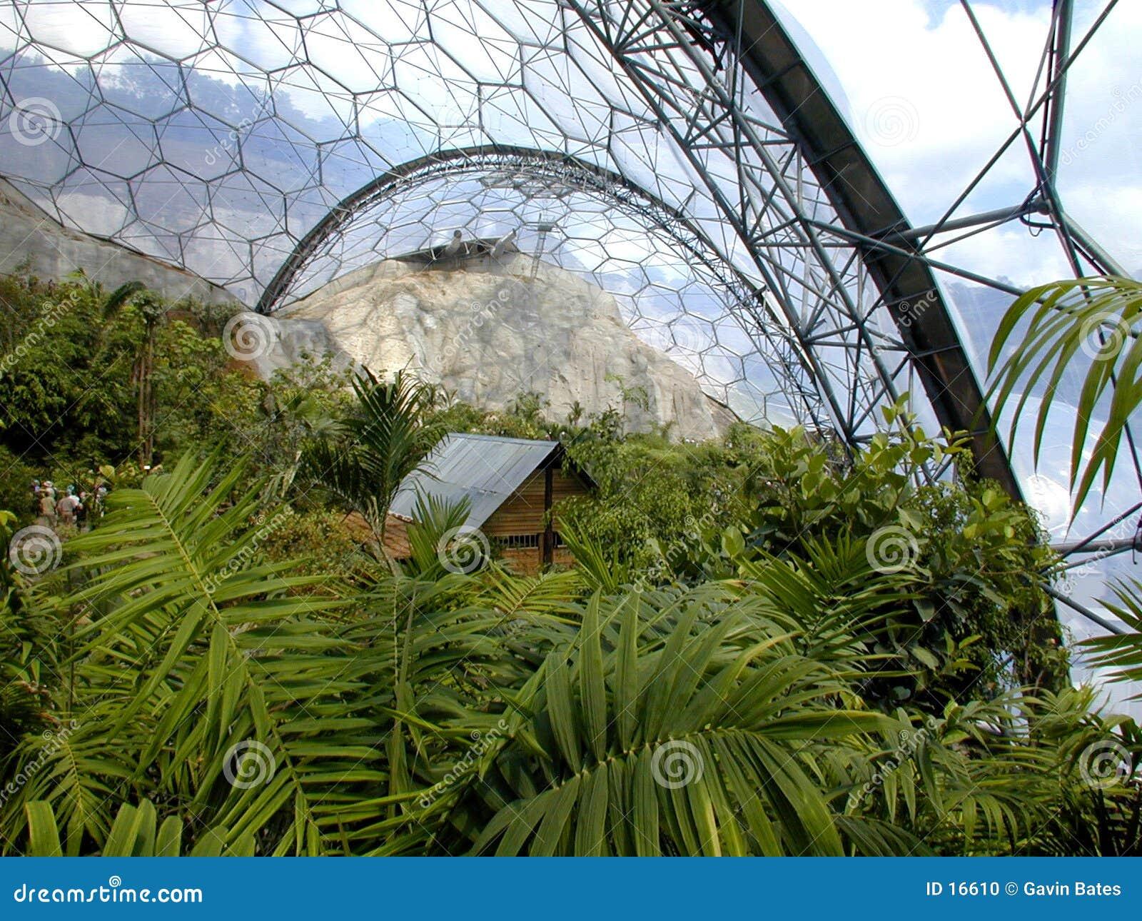 Progetto il Eden - bioma
