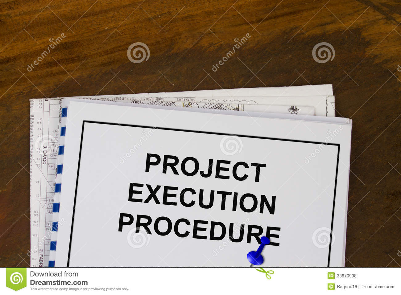 project execution After you've developed your project-management plan and set your appropriate project baselines, it's time to get to work and start executing your project plan this is often the phase when management gets more engaged and excited to see things being produced preparing to begin the project work.