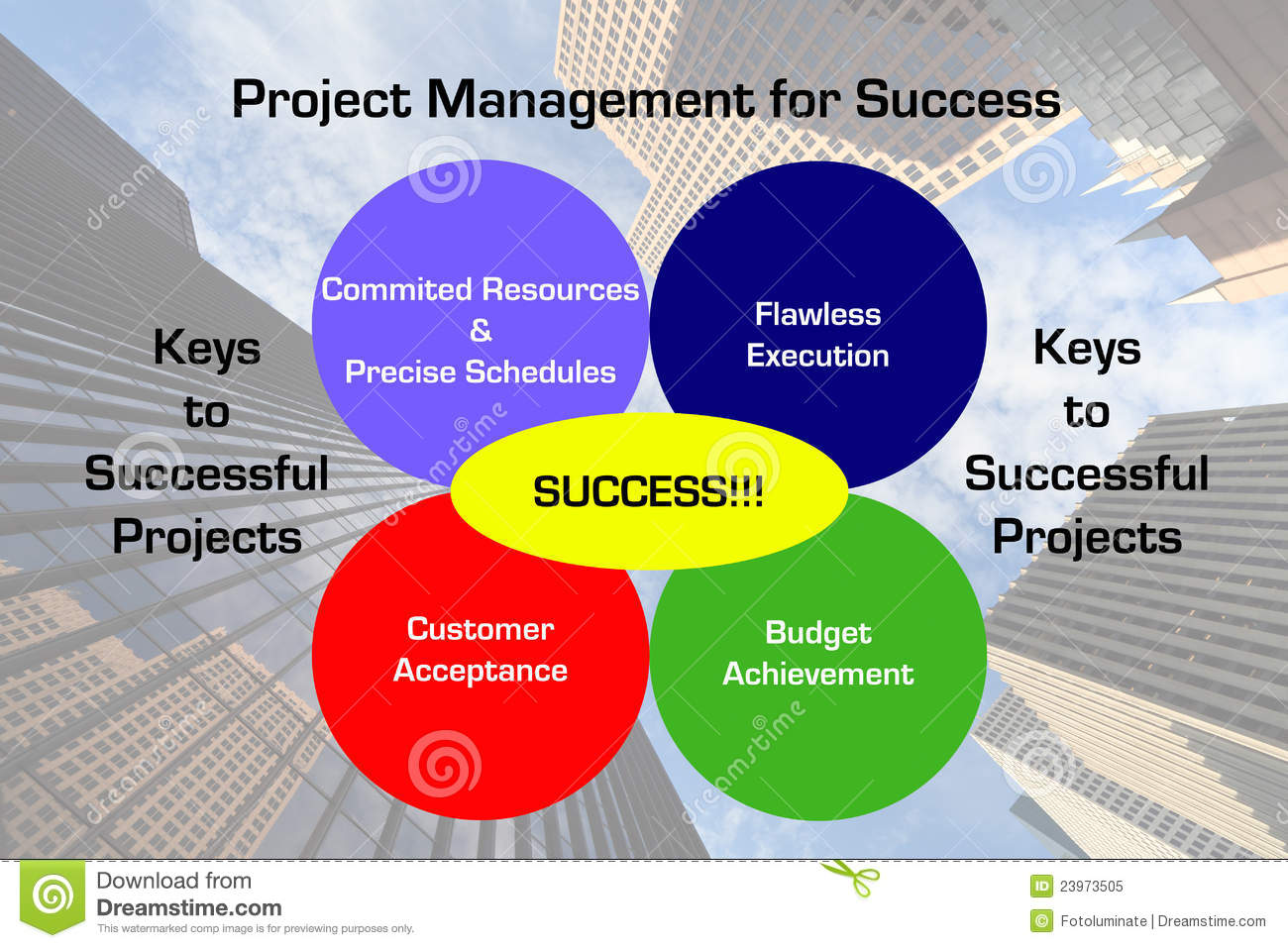 successful project management Pmi's project management professional (pmp) credential is the most important industry-recognized certification for project managers globally recognized and demanded, the pmp demonstrates that you have the experience, education, and competency to successfully lead and direct projects.