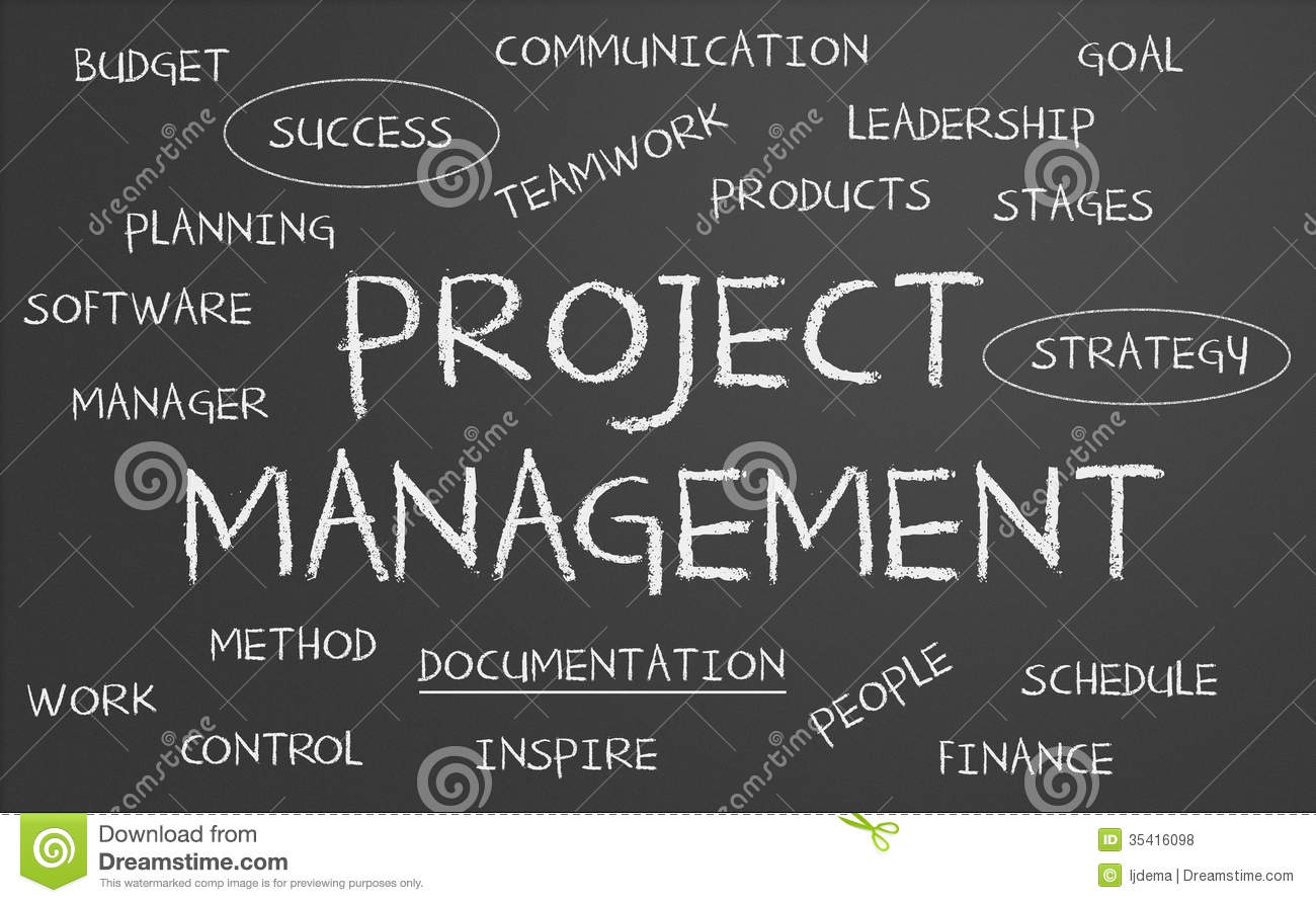 Project Management: Risk Management