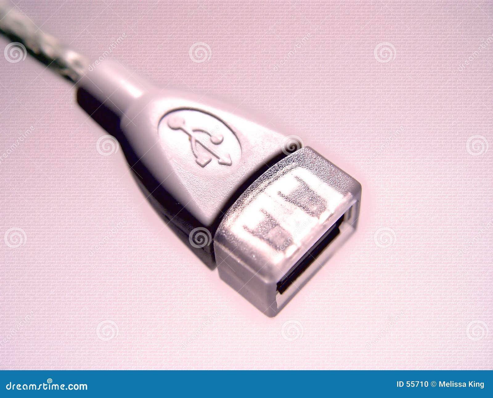Projeto abstrato cor-de-rosa do USB