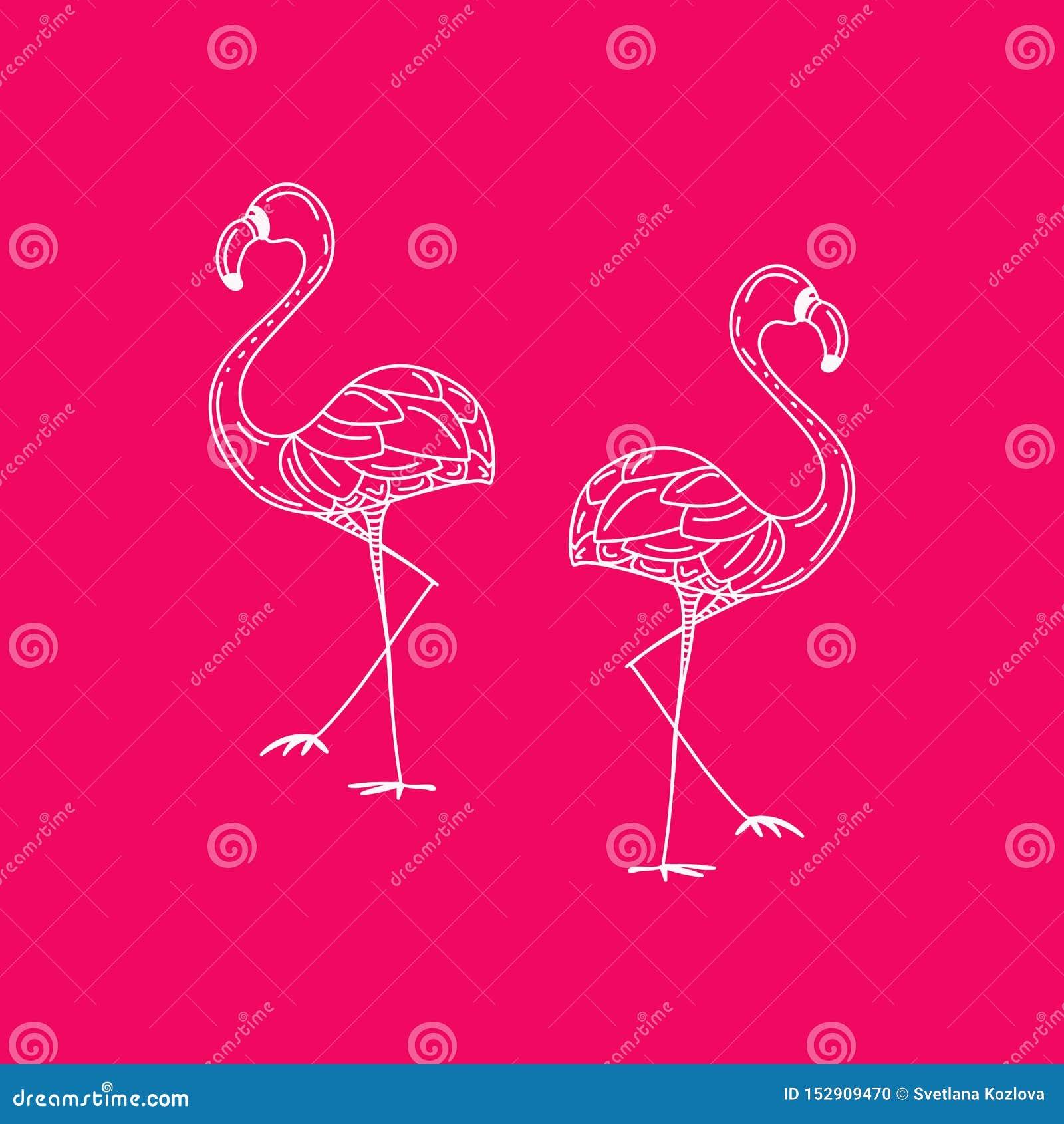 Projeto da ilustra??o do p?ssaro do flamingo no fundo