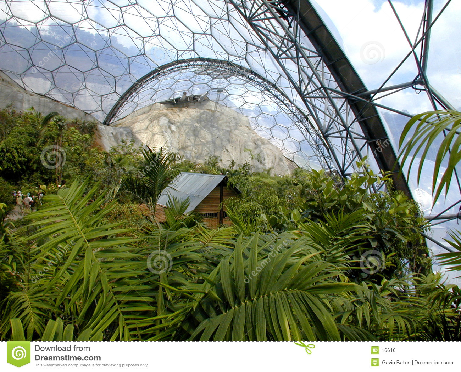 Projeto de Eden - bioma