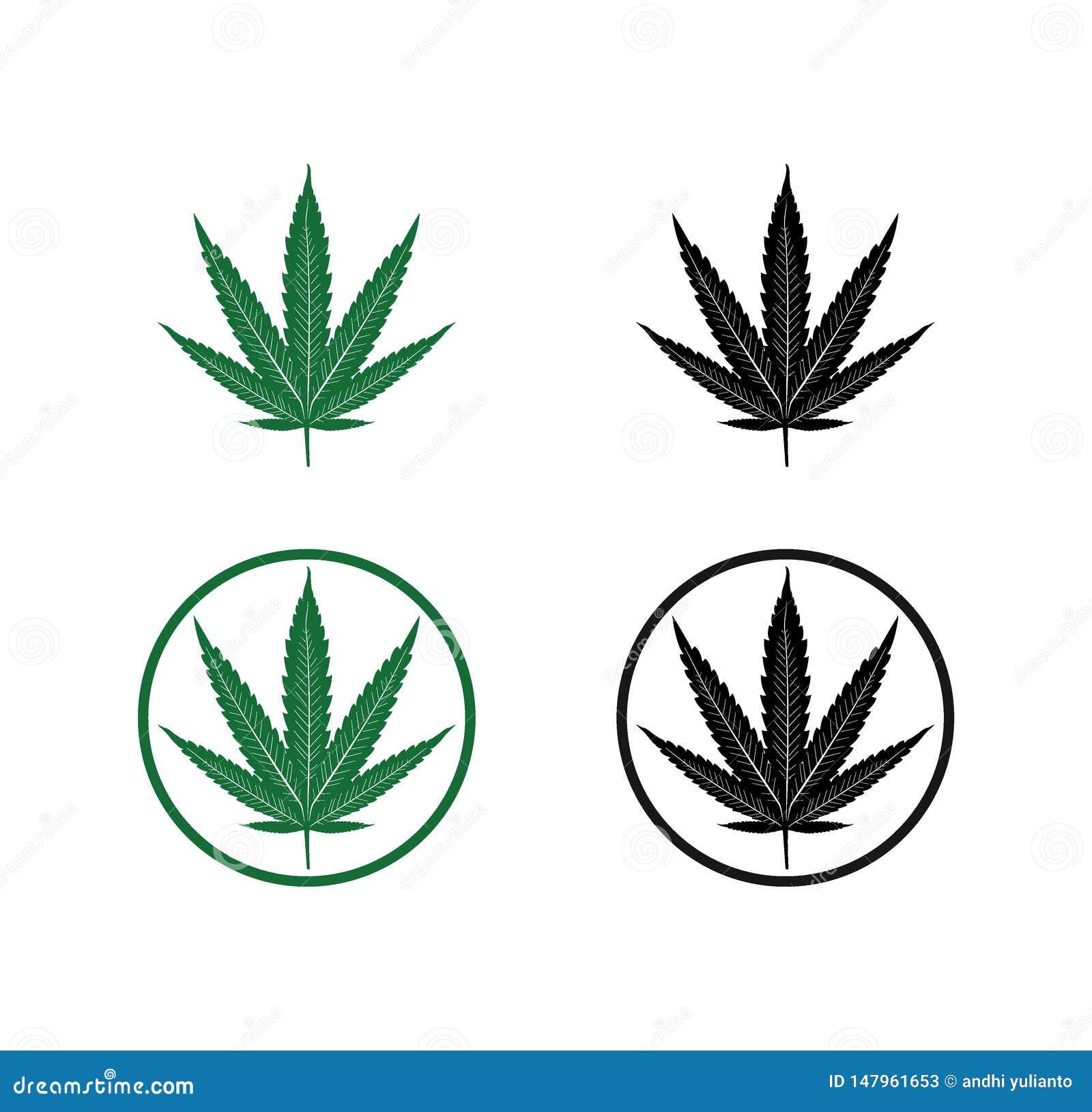 Projeto do logotipo da ilustra??o da silhueta da folha da marijuana do cannabis