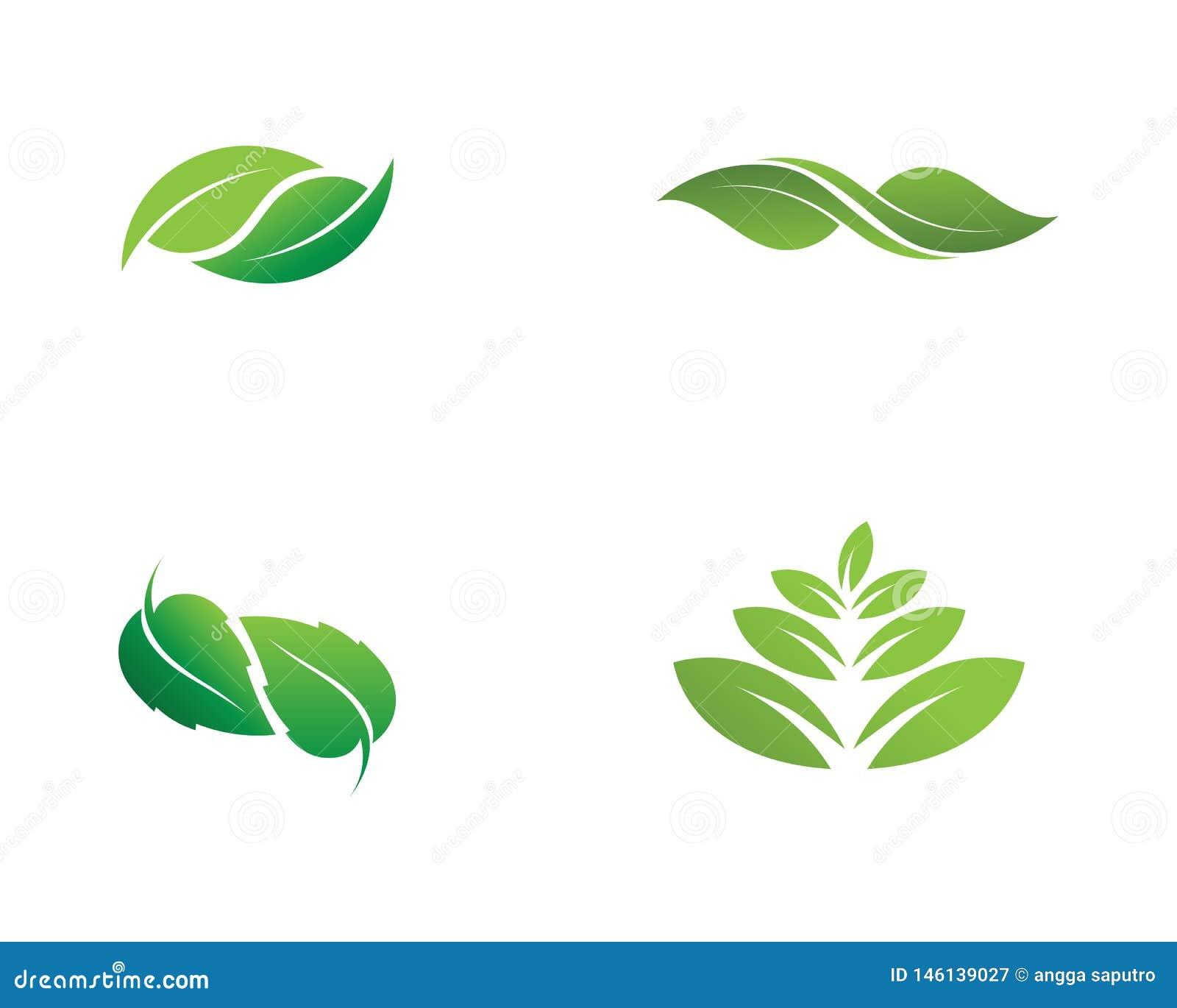 Projeto do logotipo do vetor da folha da ?rvore, conceito eco-amig?vel