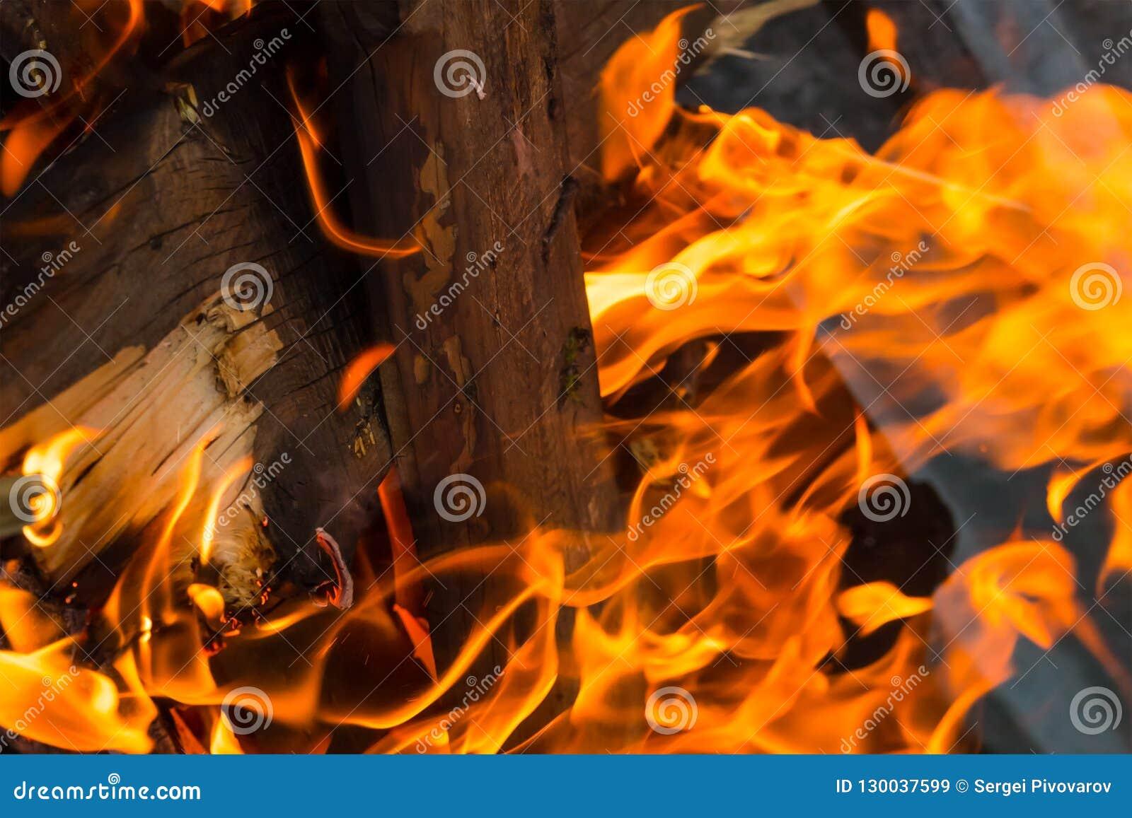 Projeto vertical de queimadura do log do fundo do close-up da textura do fogo brilhante com as faíscas das línguas longas