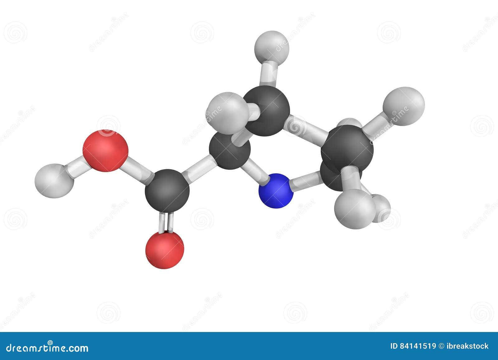 ProLine, un ácido alfa-amino del cual se utiliza en la biosíntesis