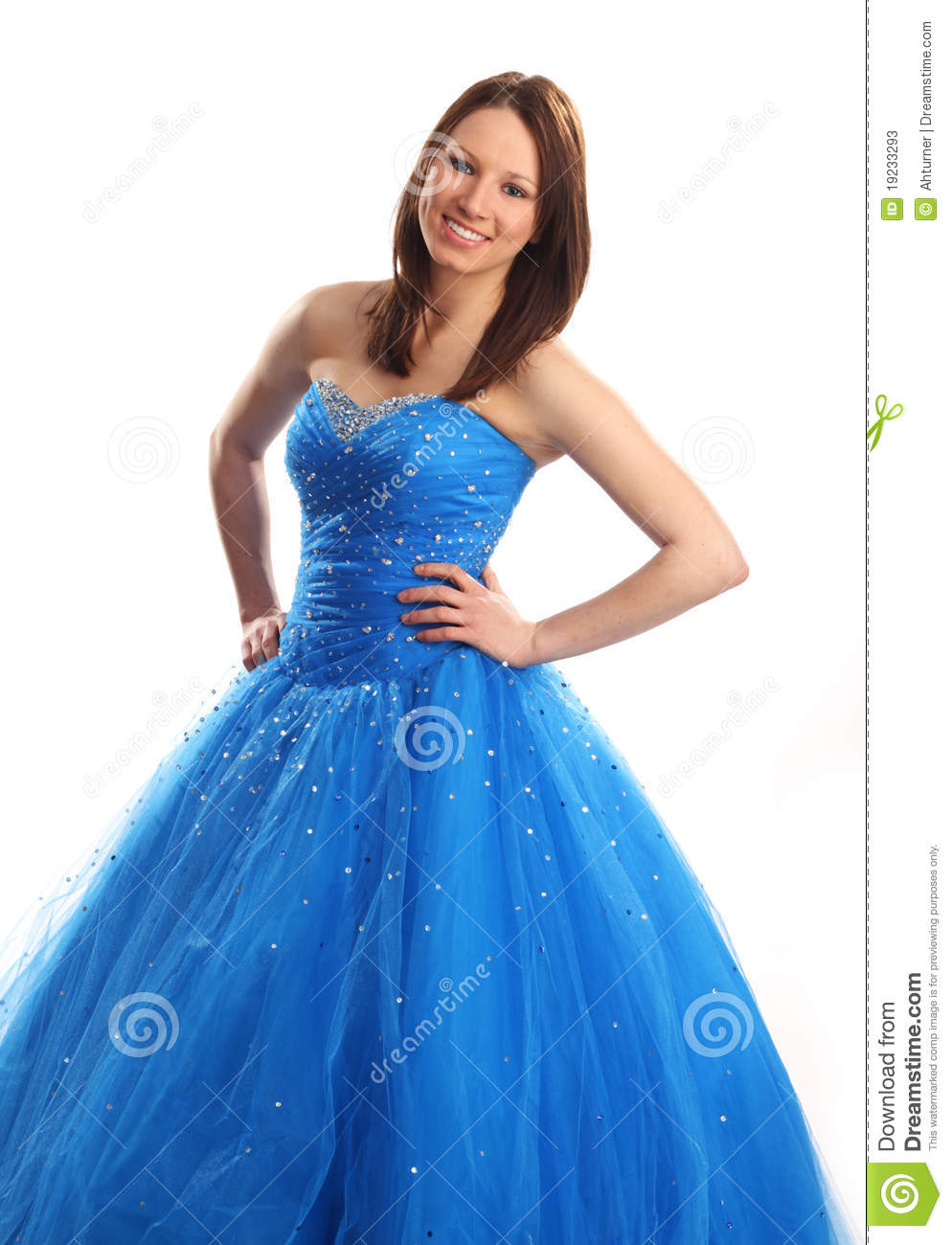 Prom Or Bridesmaid Dress Stock Image Image Of Beauty 19233293