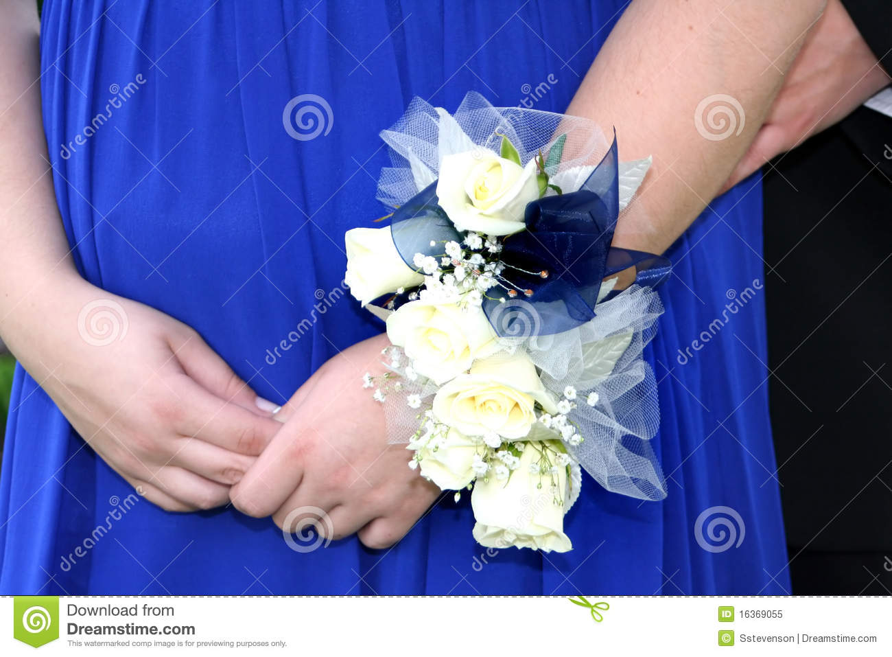 Prom corsage stock image image of baby fashion couple 16369055 prom corsage izmirmasajfo Gallery
