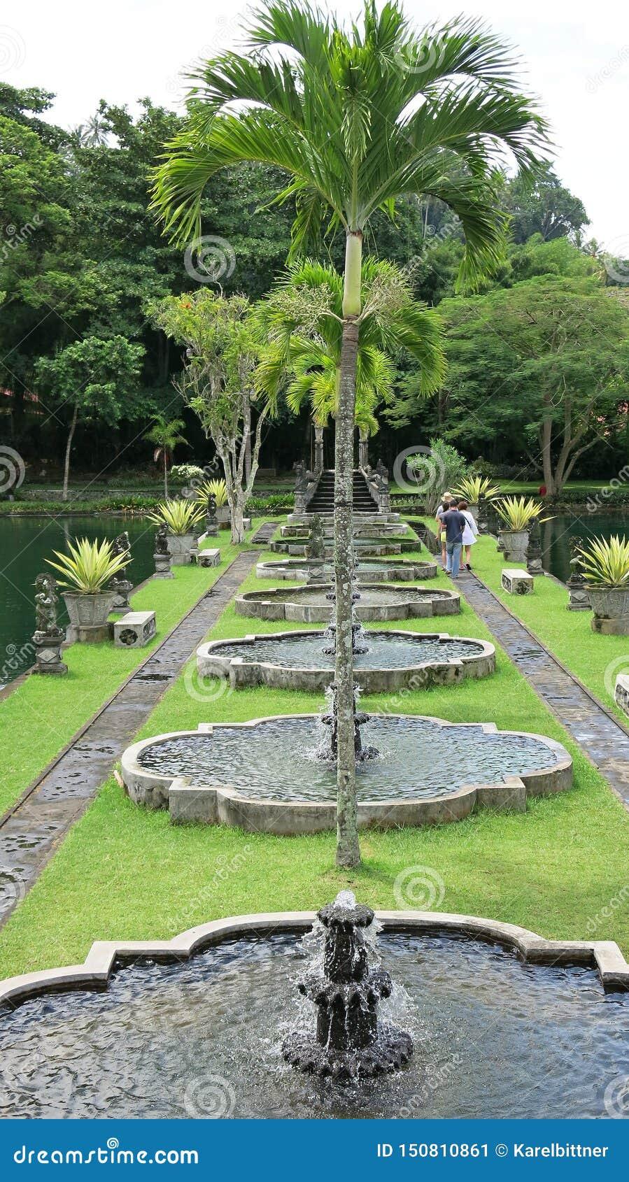 Promenad i tropisk trädgård Den tropiska trädgården med gömma i handflatan och många färgrika blommor