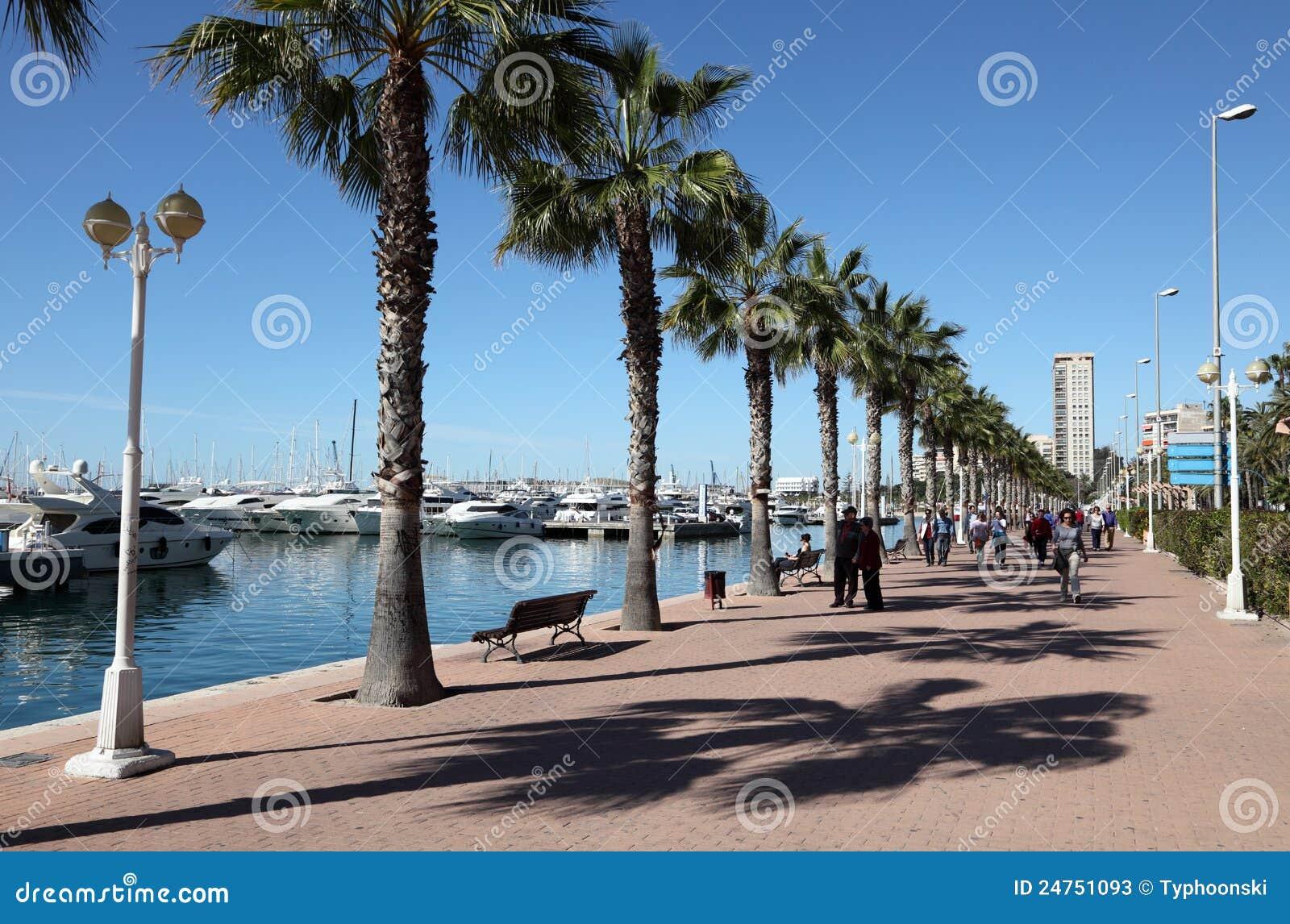 Promenade in alicante spain editorial stock photo image 24751093 - Stock uno alicante ...