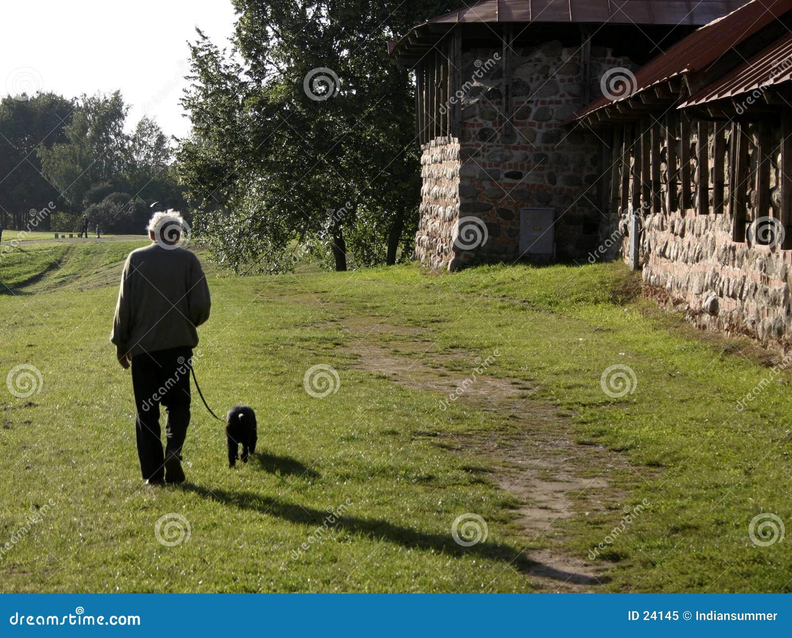 promenade  de la tarde