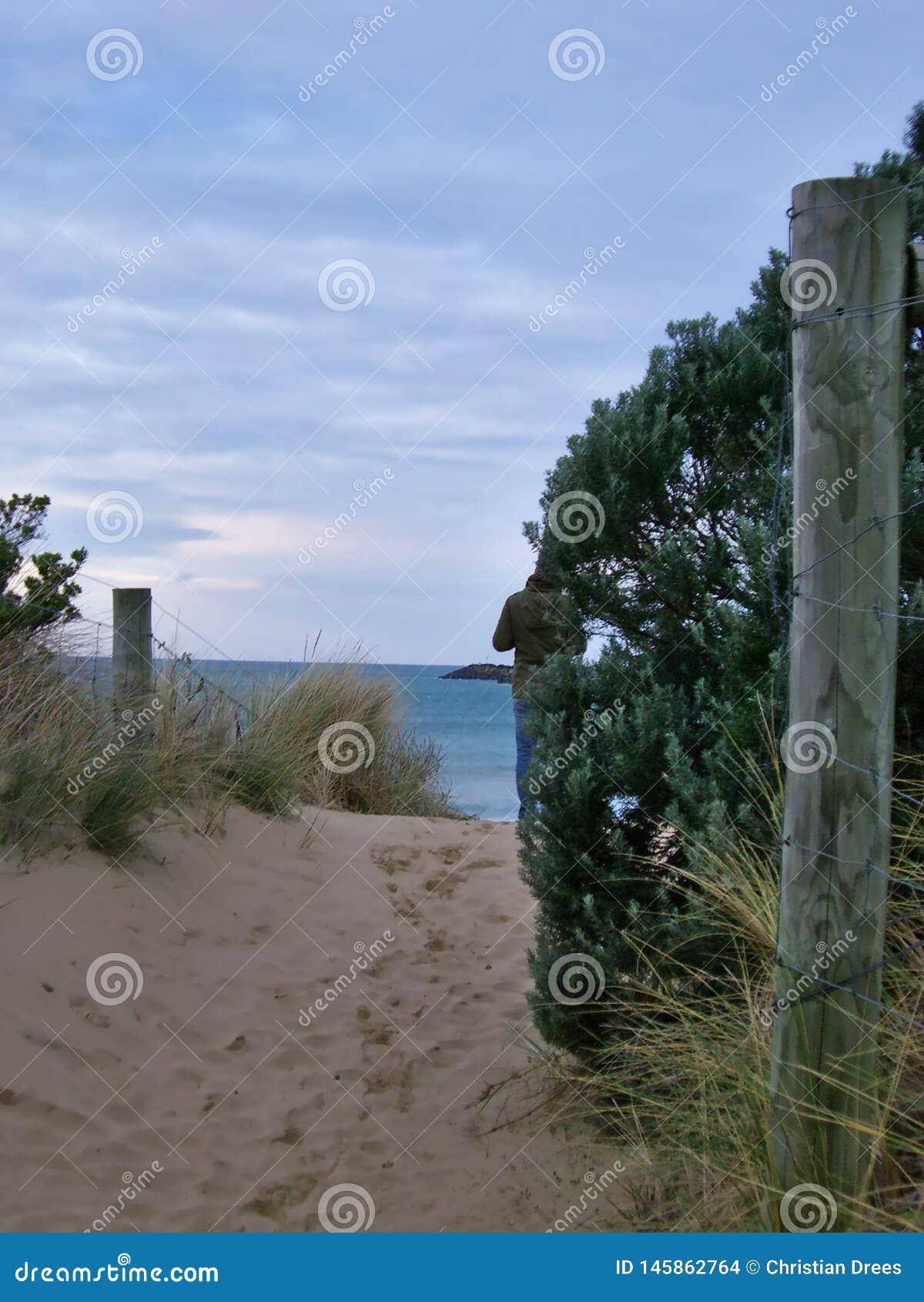 Promenade dunaire