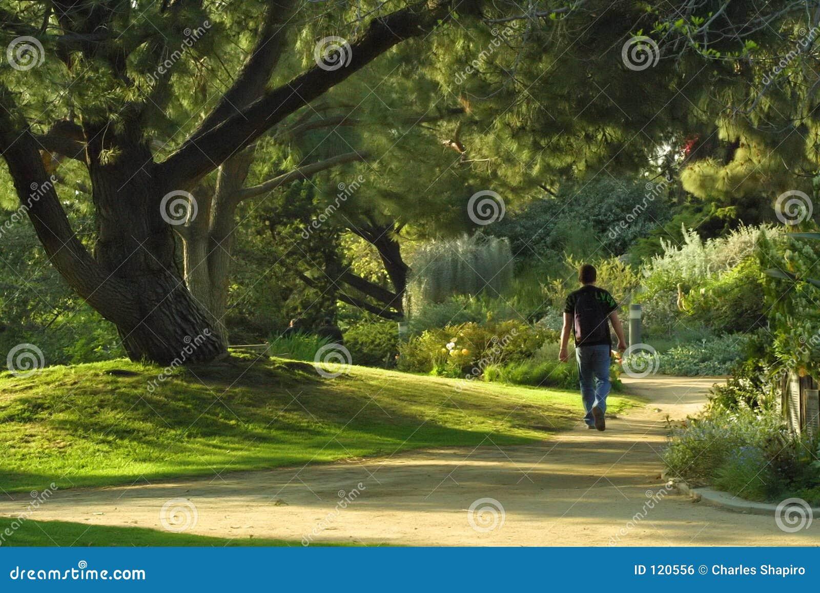 Promenade en stationnement