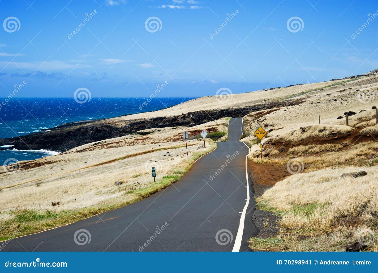Promenade en voiture Maui, Hawaï