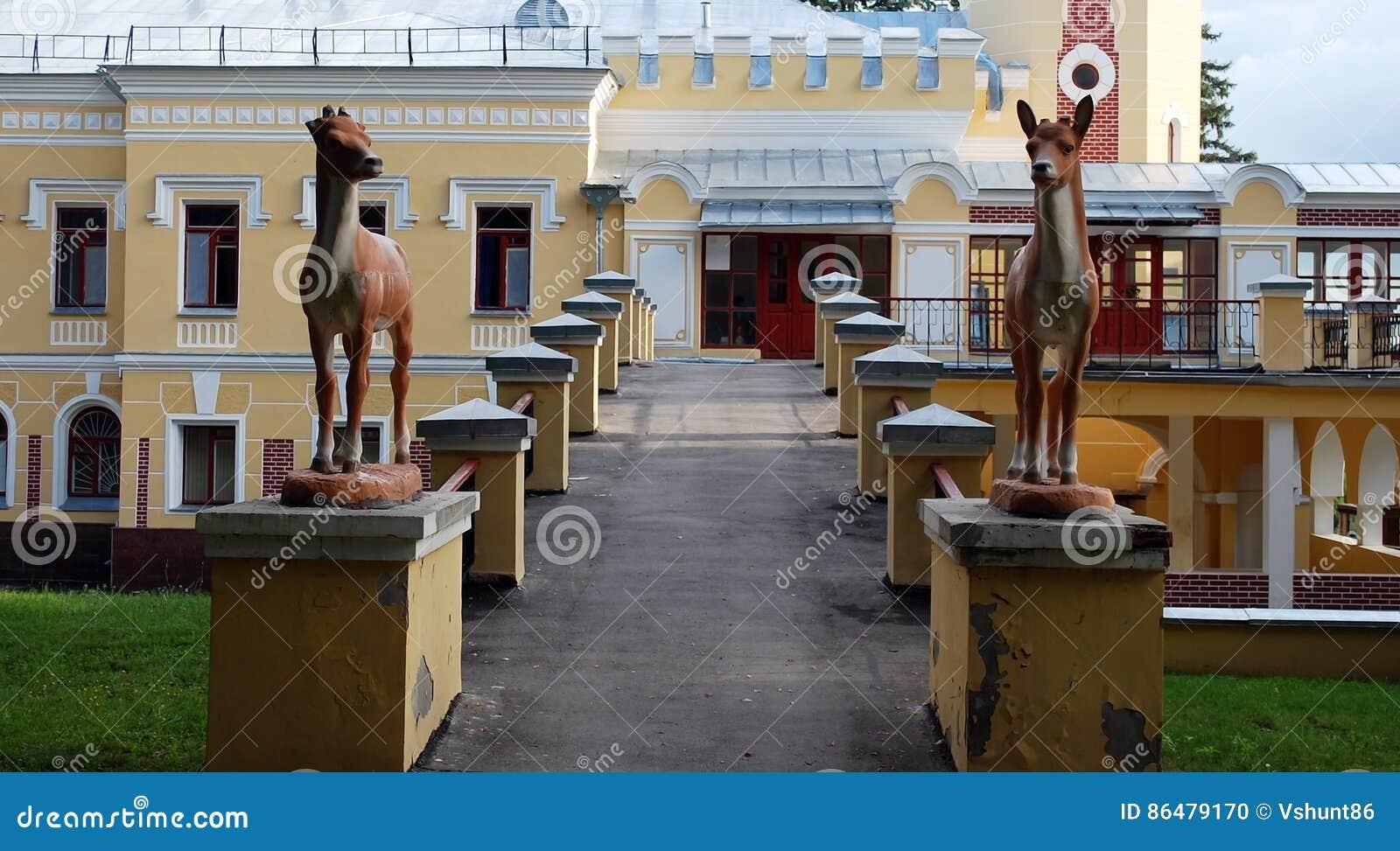A propriedade do barão von-Derwis em Kiritsakh Sanatório hoje em dia tubercular Região de Ryazan