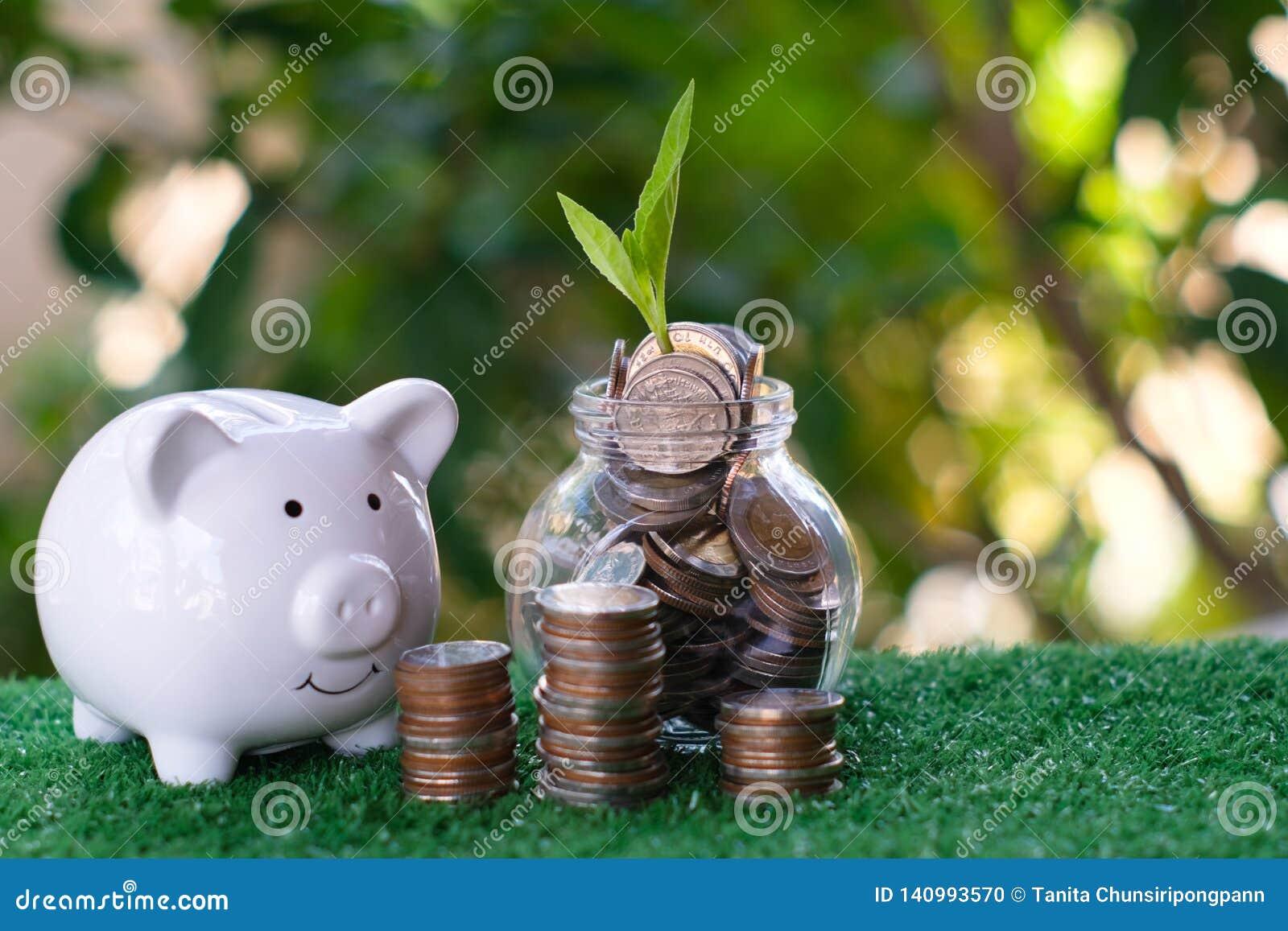 Prosiątko bank, stos i monety Rośliny dorośnięcie od stosu monety odnosić sie oszczędzania i inwestycji pojęcie