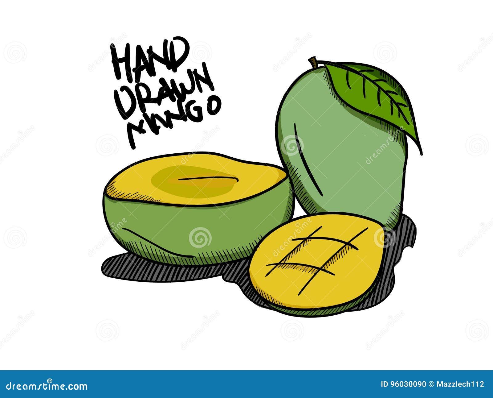 Prosty Ilustracyjny mango z ręka rysującym stylem