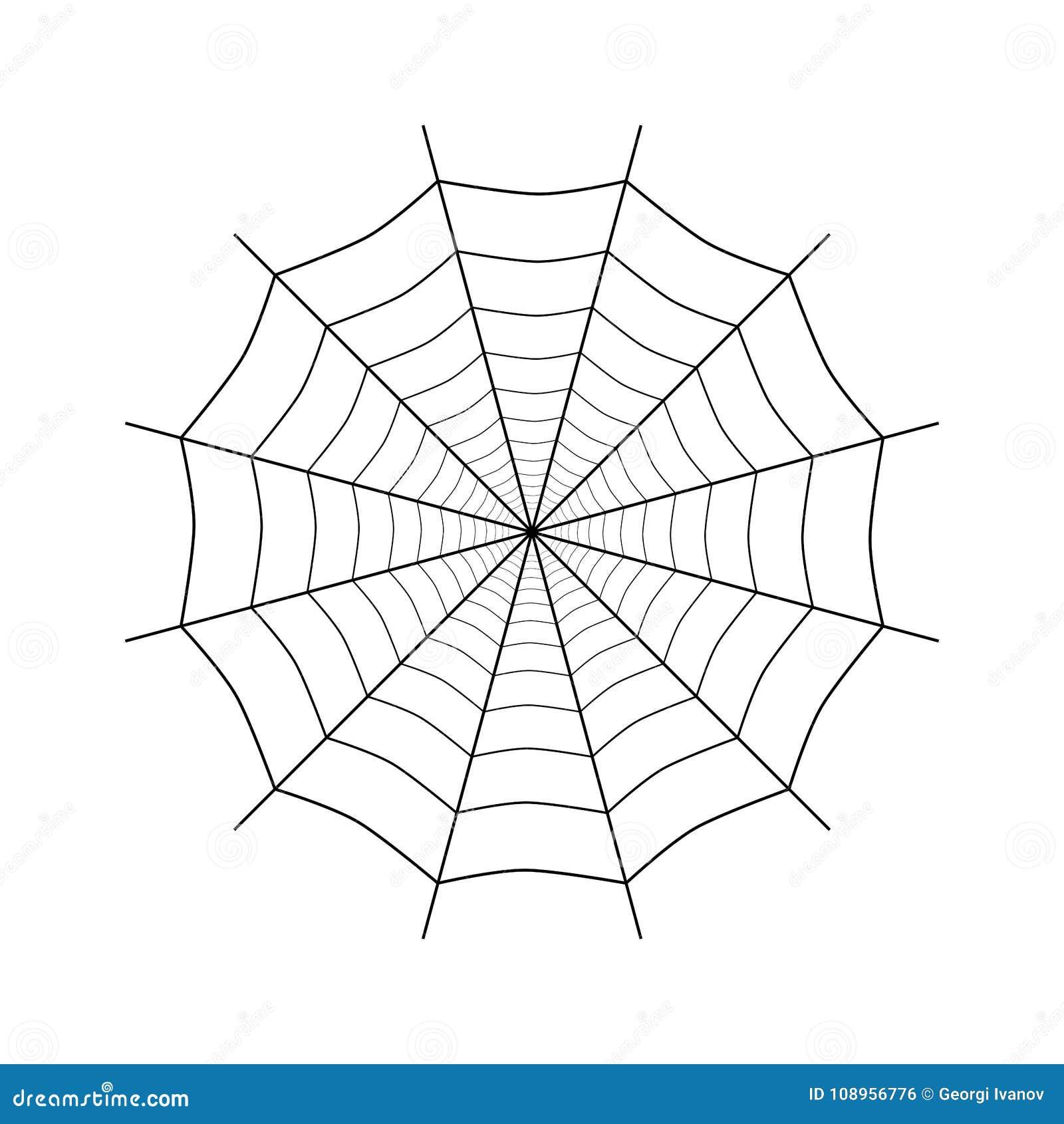 Prosty spiderweb na bielu