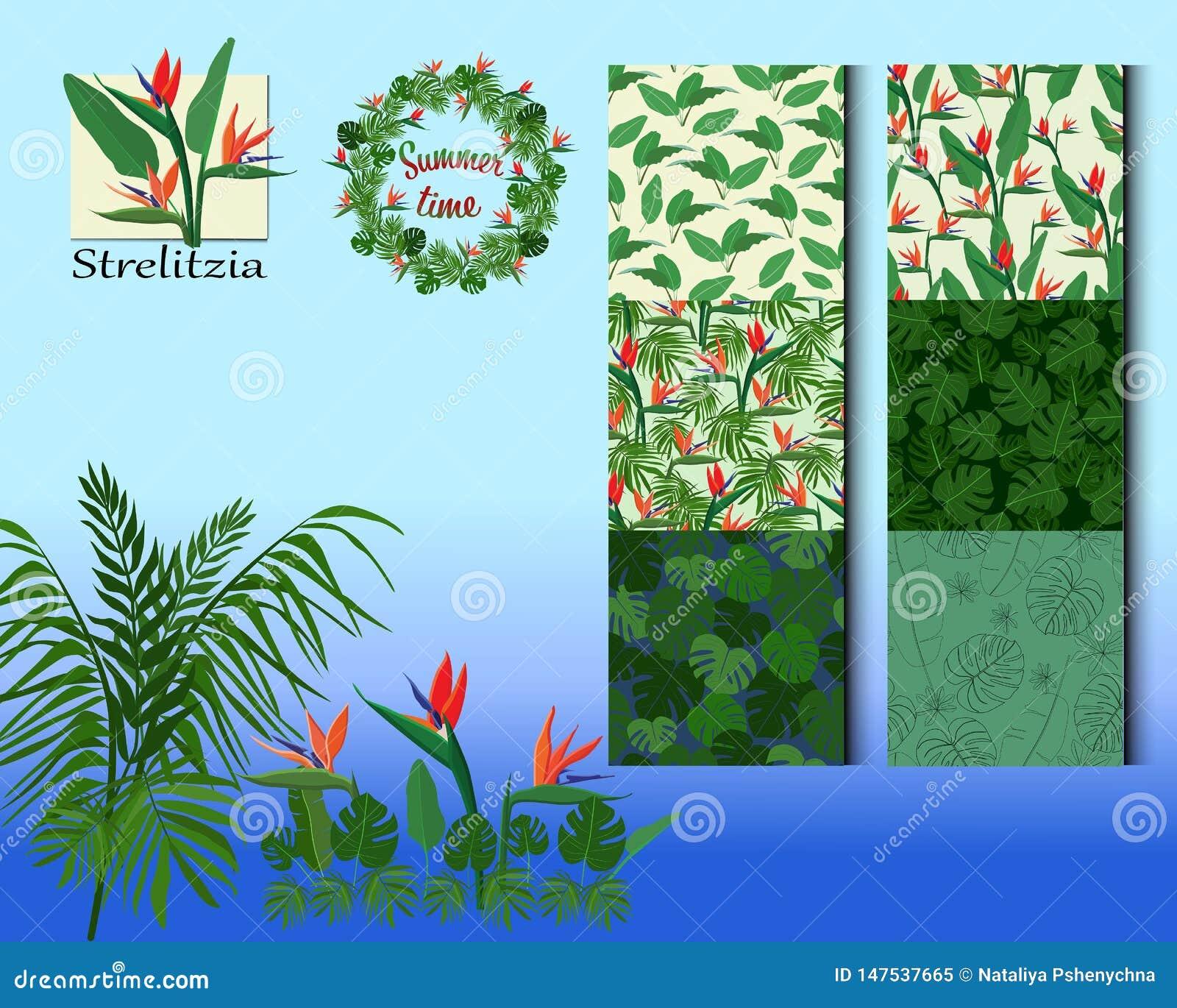 Prostych tropikalnych kwiat?w bezszwowy wz?r