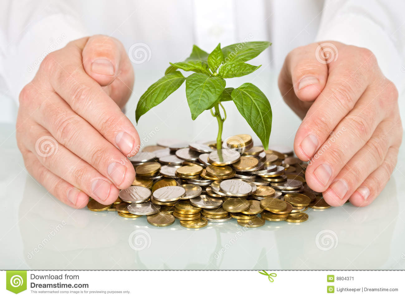 Protecting an investment and money concept