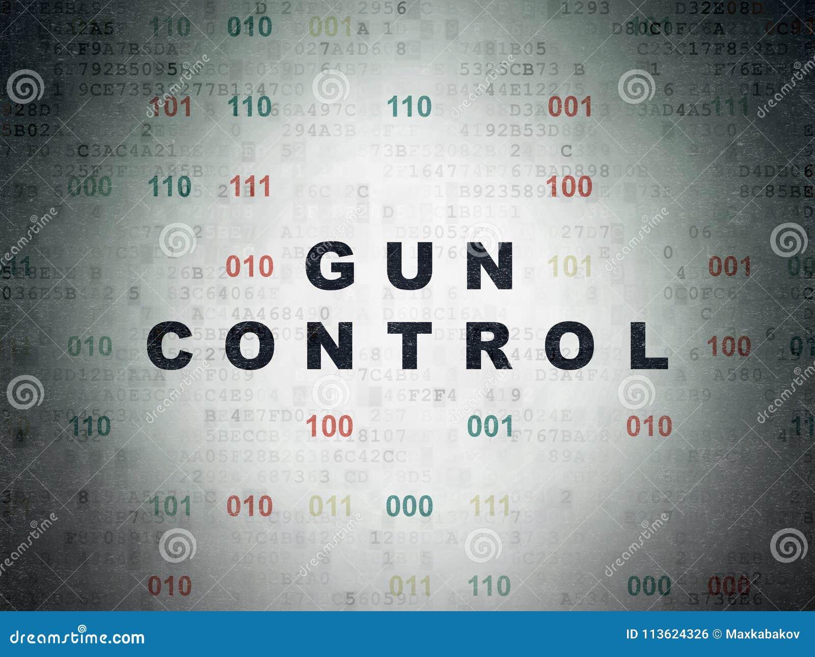 gun control paper