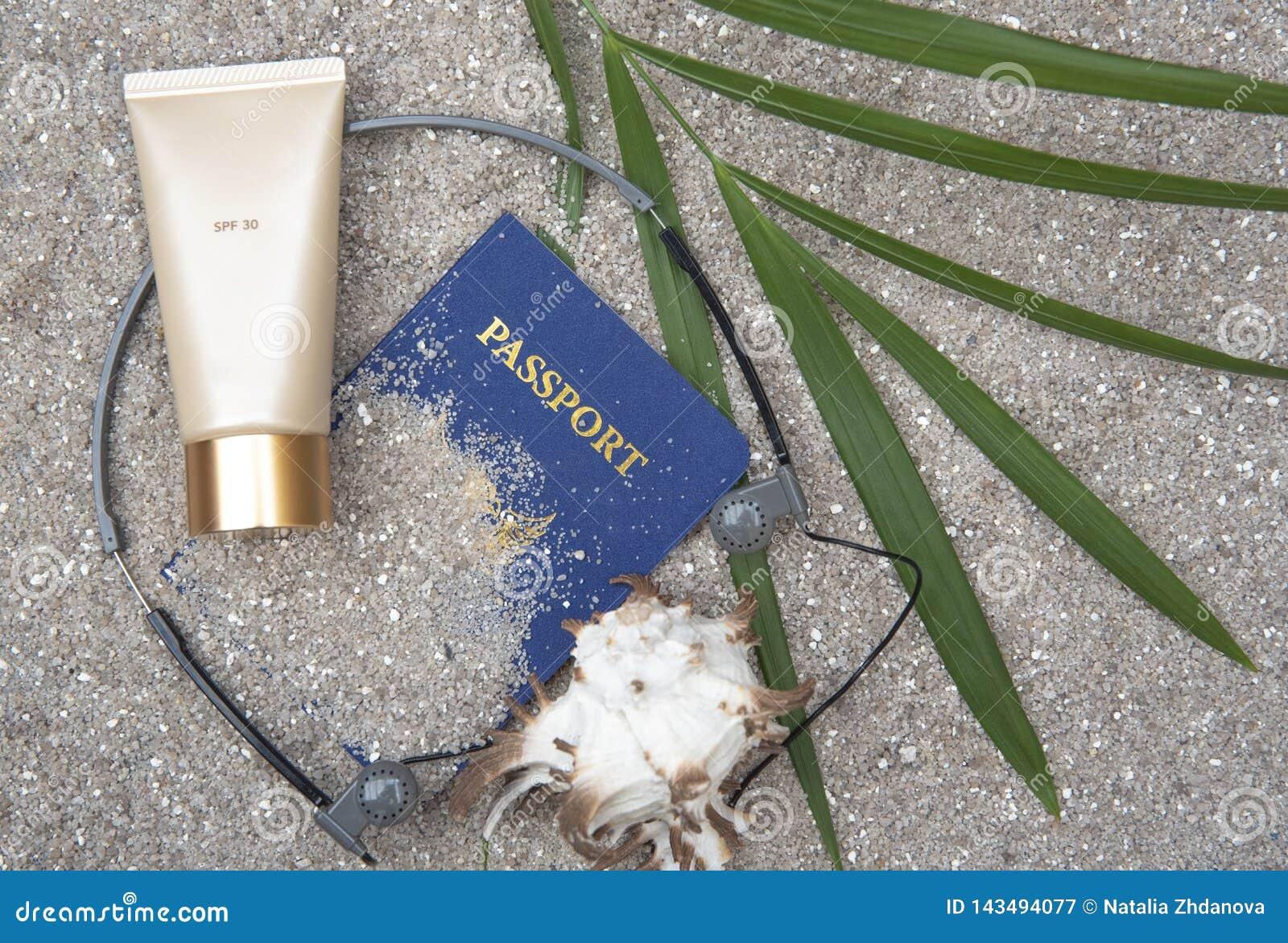 Protection solaire, verres, coquille, palmette sur le sable