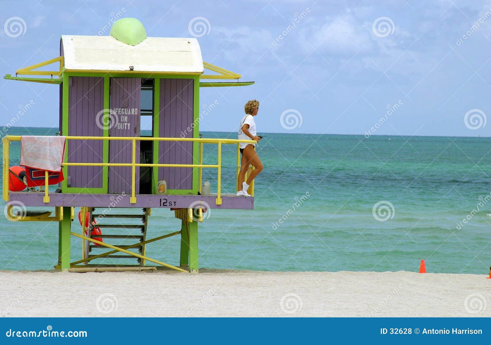 Download Protector Del Sur De La Playa Foto de archivo - Imagen de south, pastel: 32628
