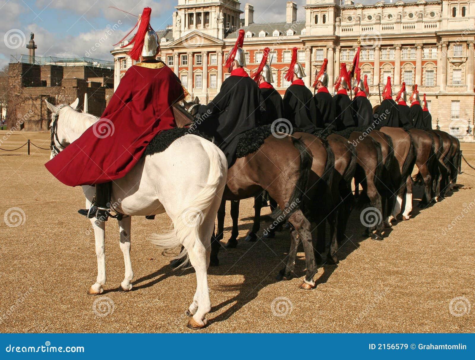 Protectores de caballo